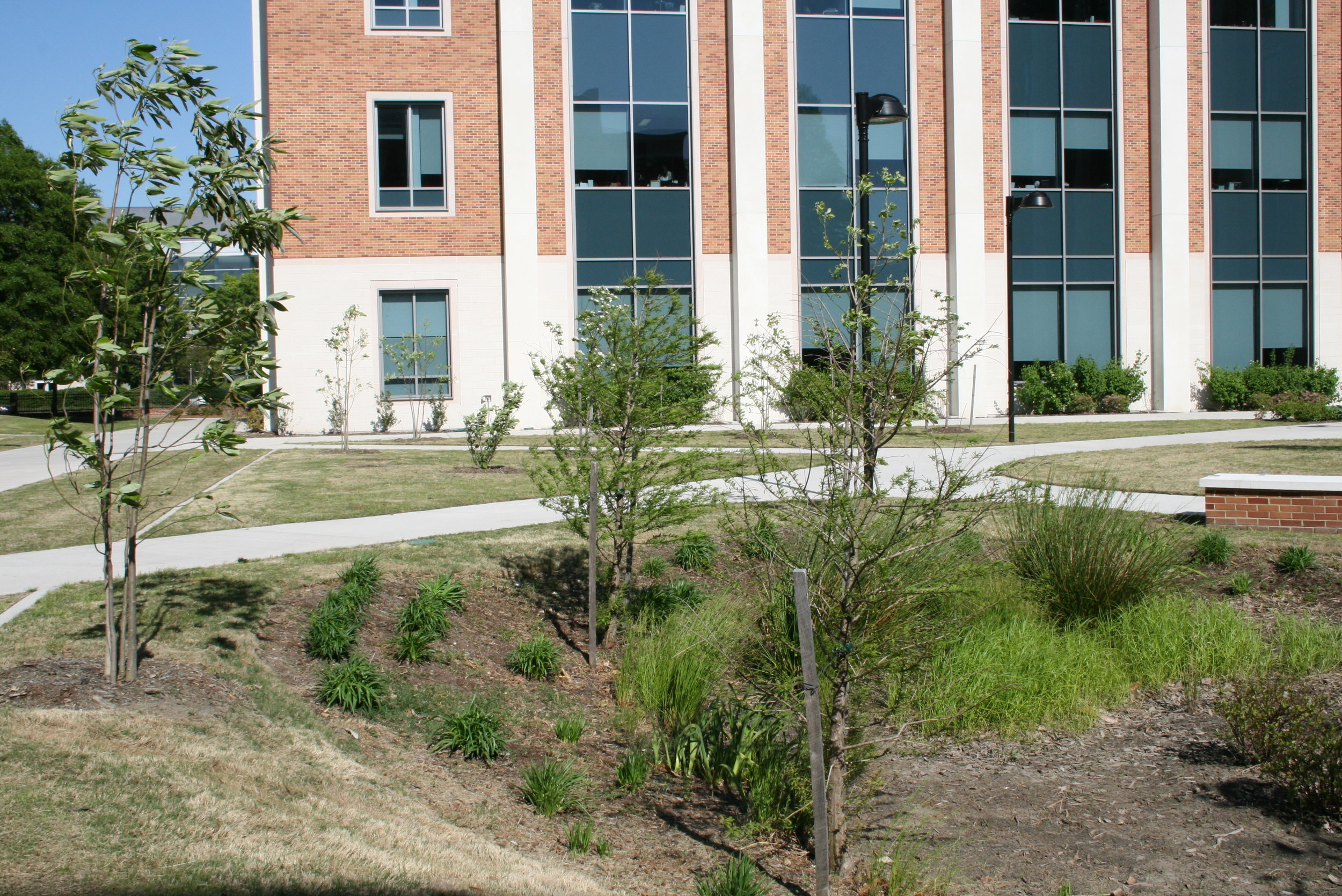 ODU: College of Education Building