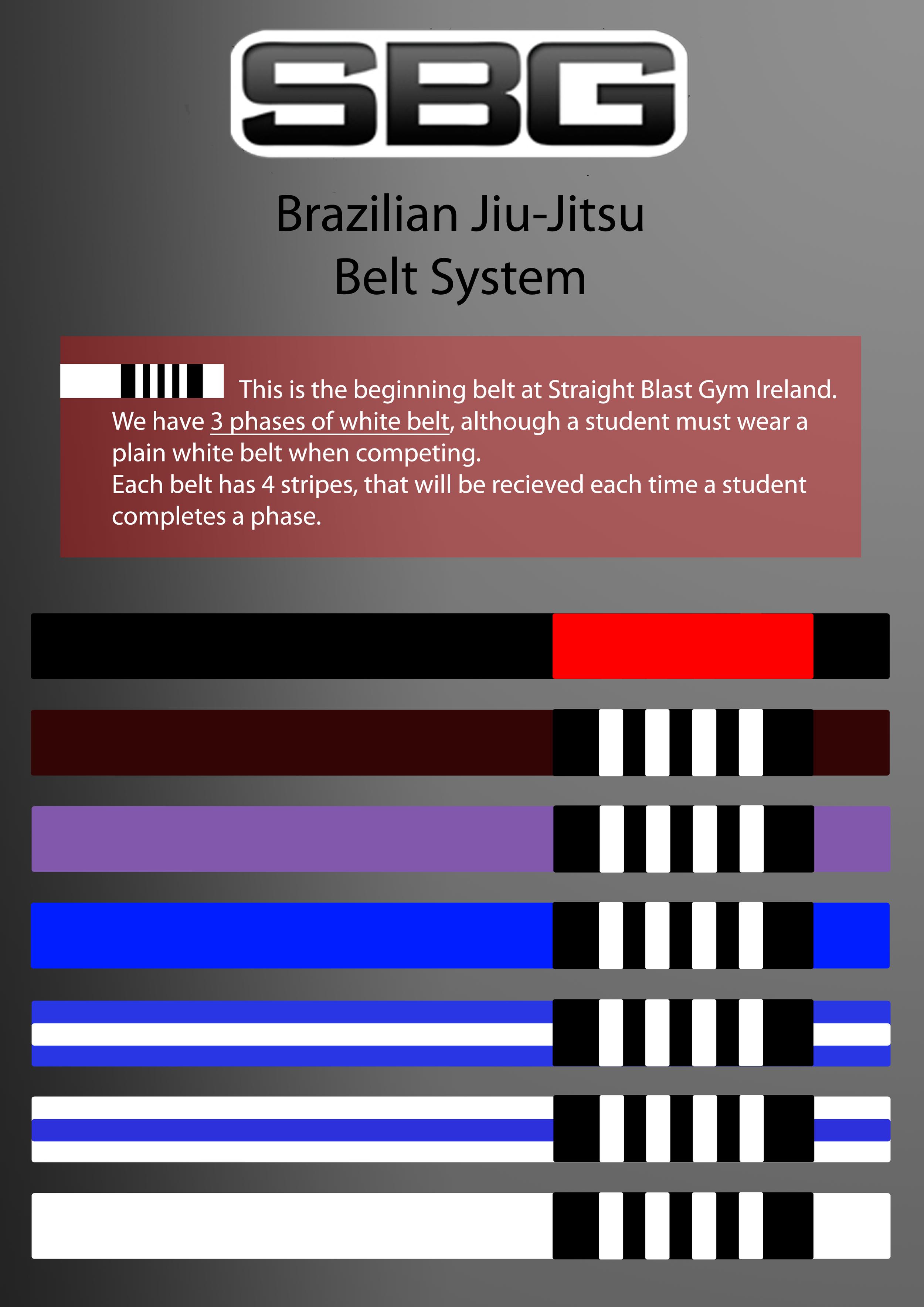 Brazilian Jiu-Jitsu in Dublin - SBG Ireland HQ - Dublin
