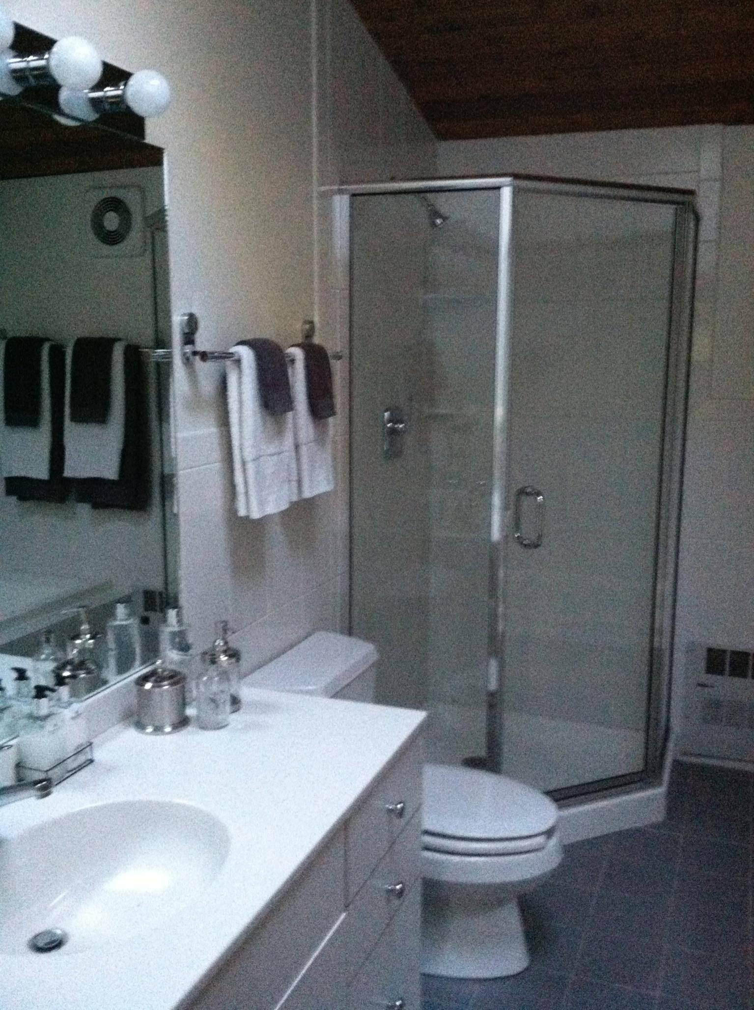 Farmington Shower Before