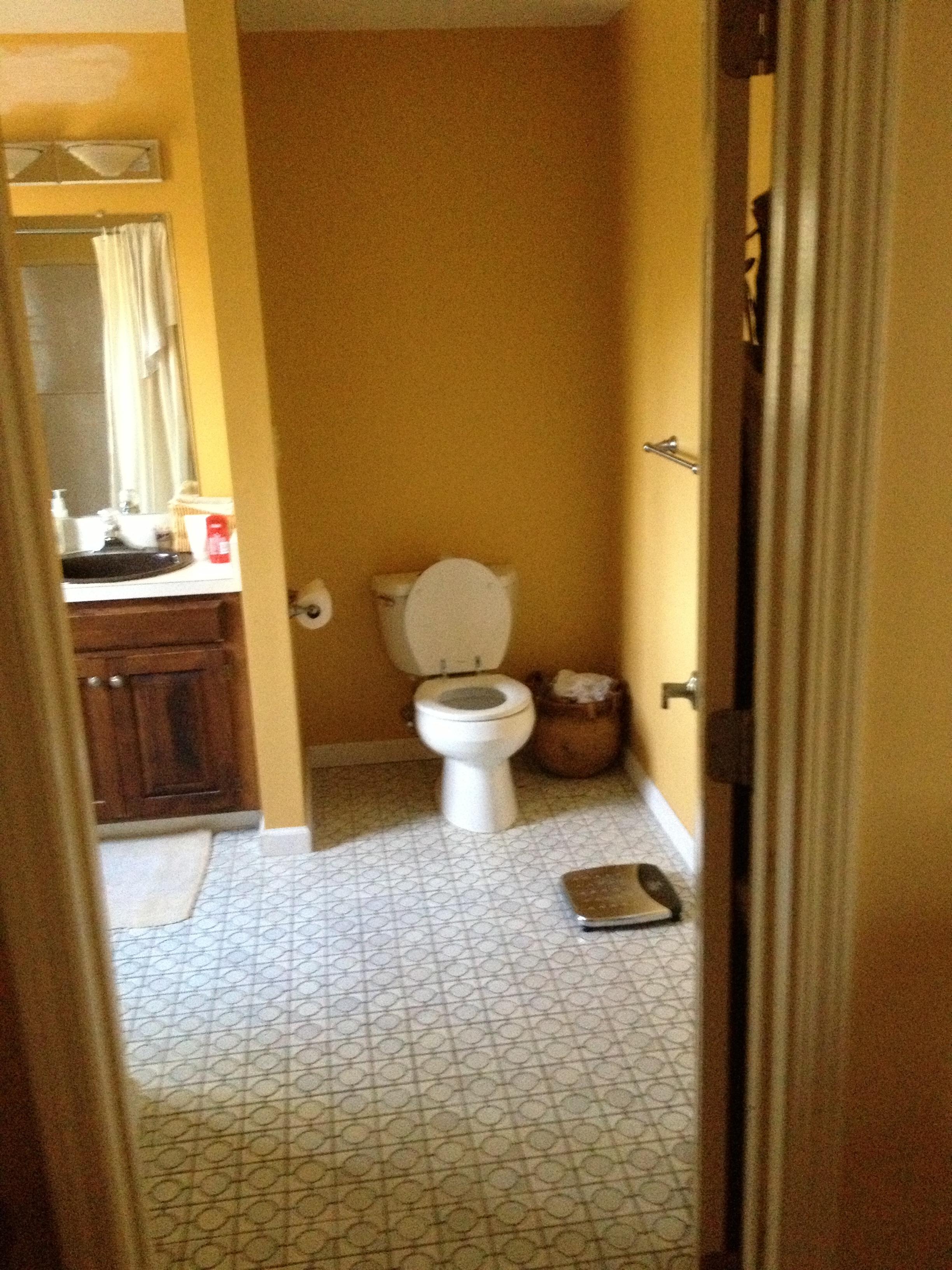 Avon Bathroom Before