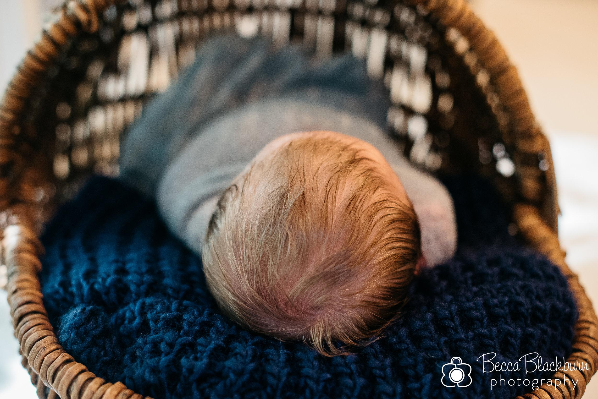 Kronberg newborn-3.jpg