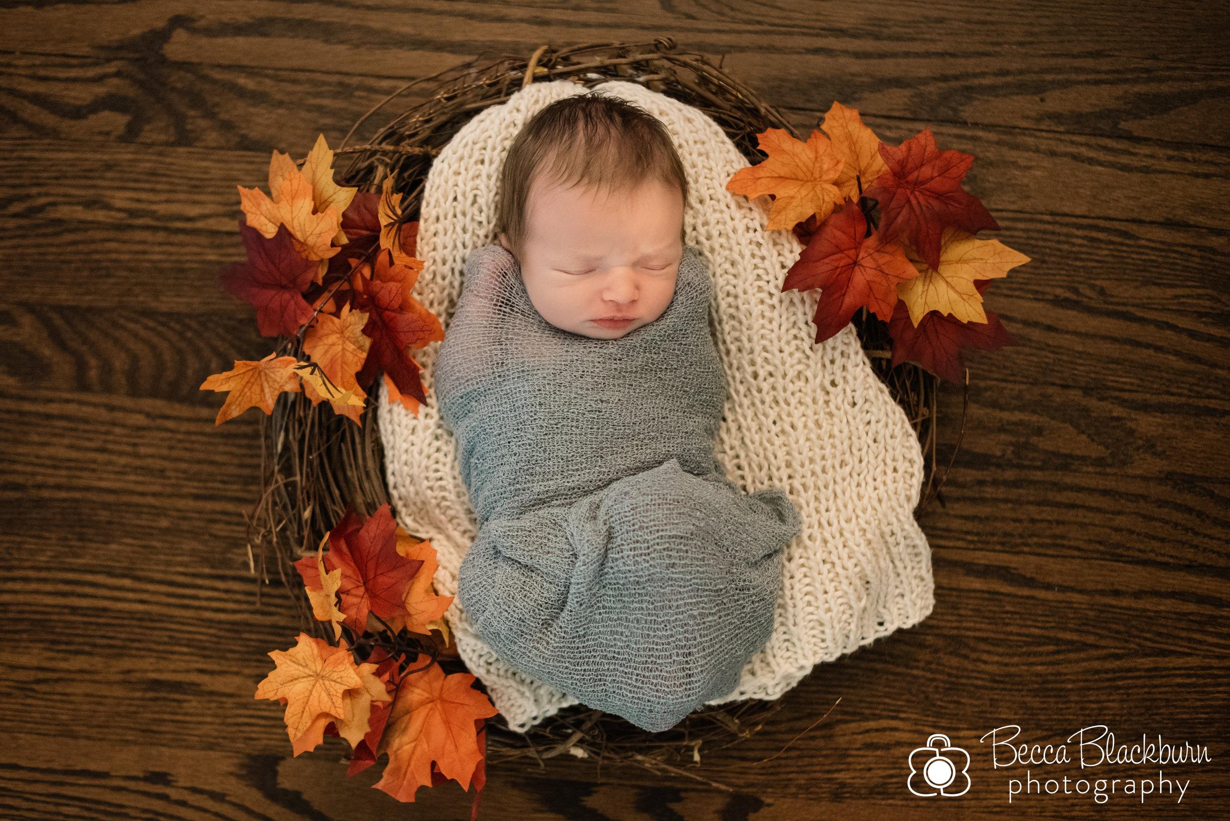 Kronberg newborn-4.jpg