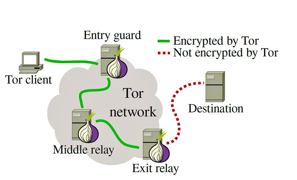 TOR Network Setup