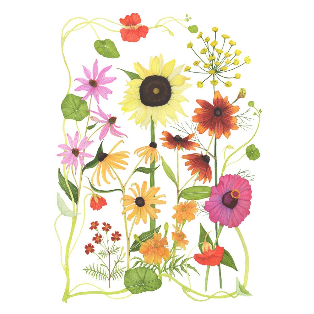 Summer Flower Garden by Anne Butera
