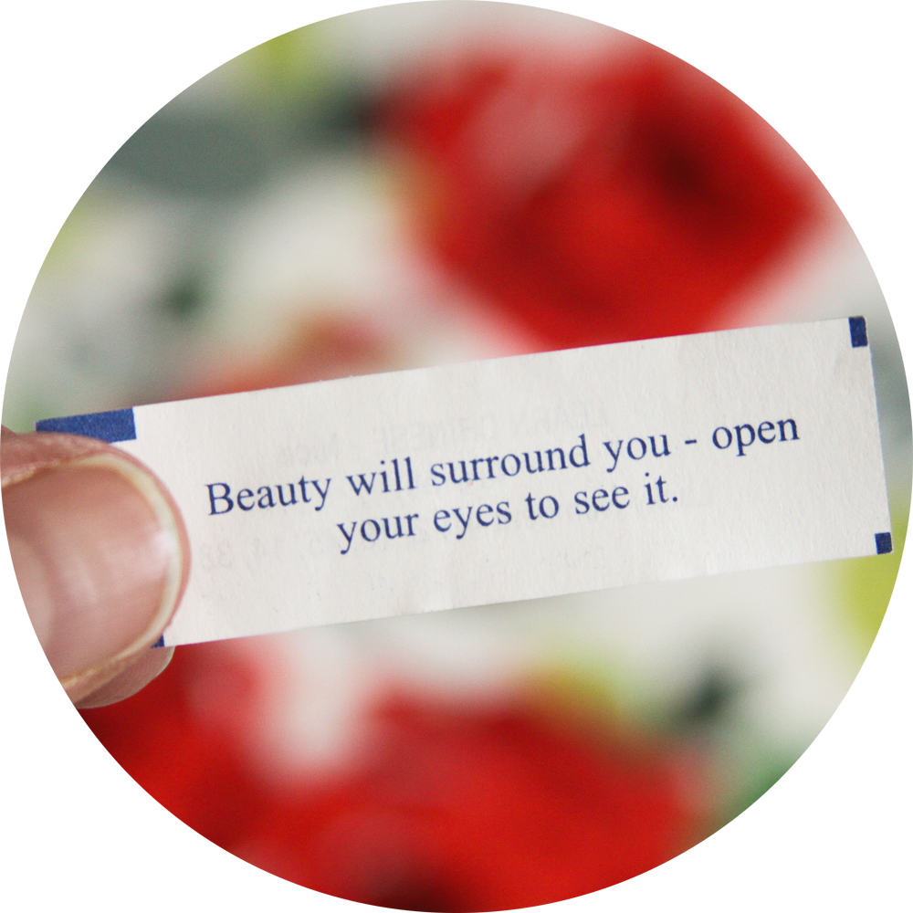 Beauty Will Surround You Fortune