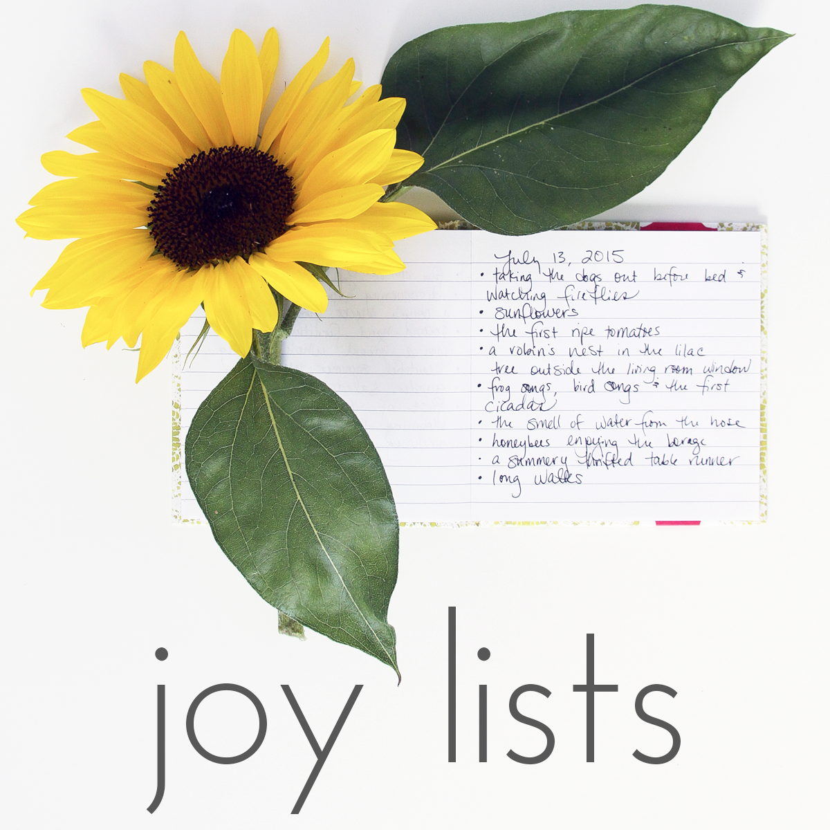 Joy Lists