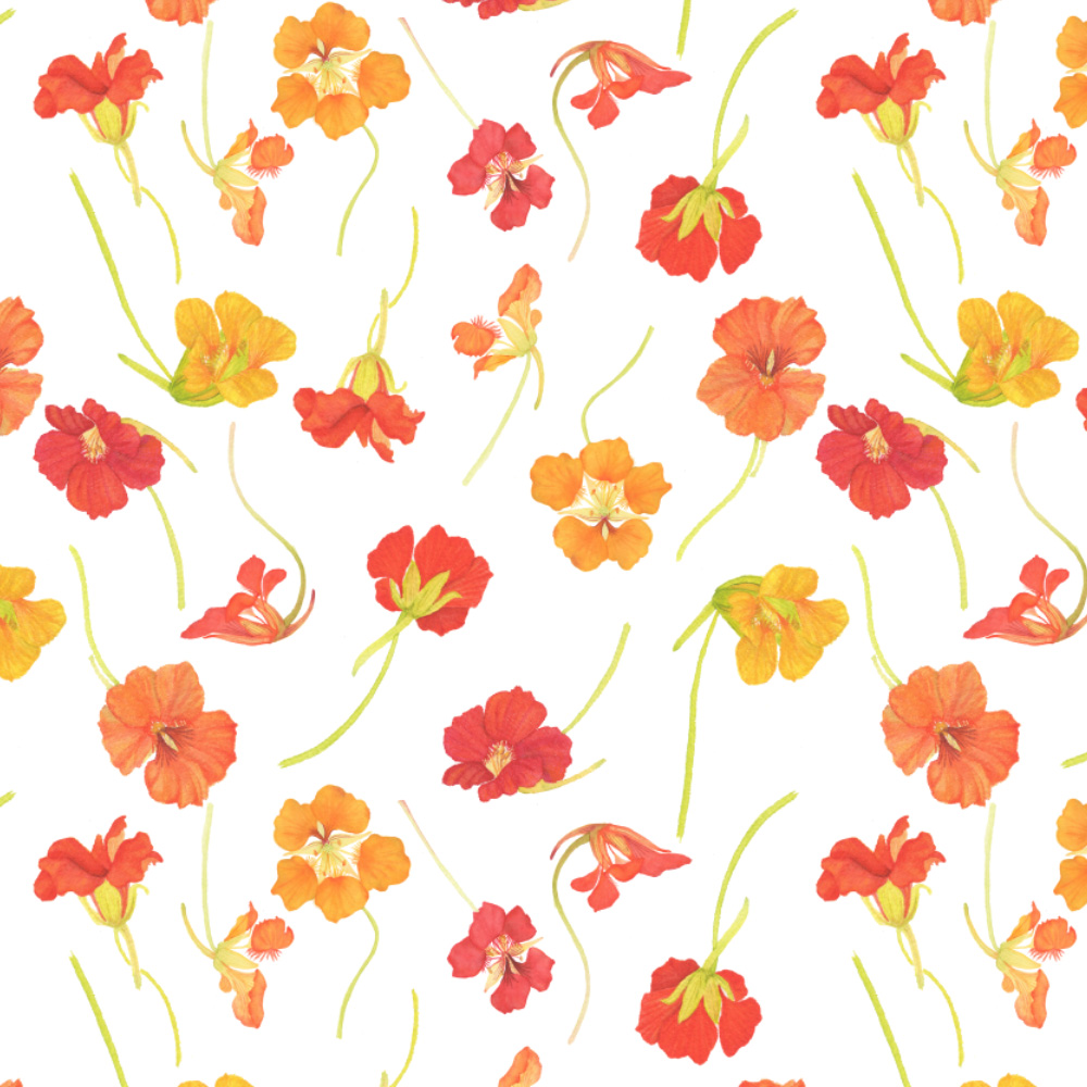 Watercolor Nasturtium Fabric
