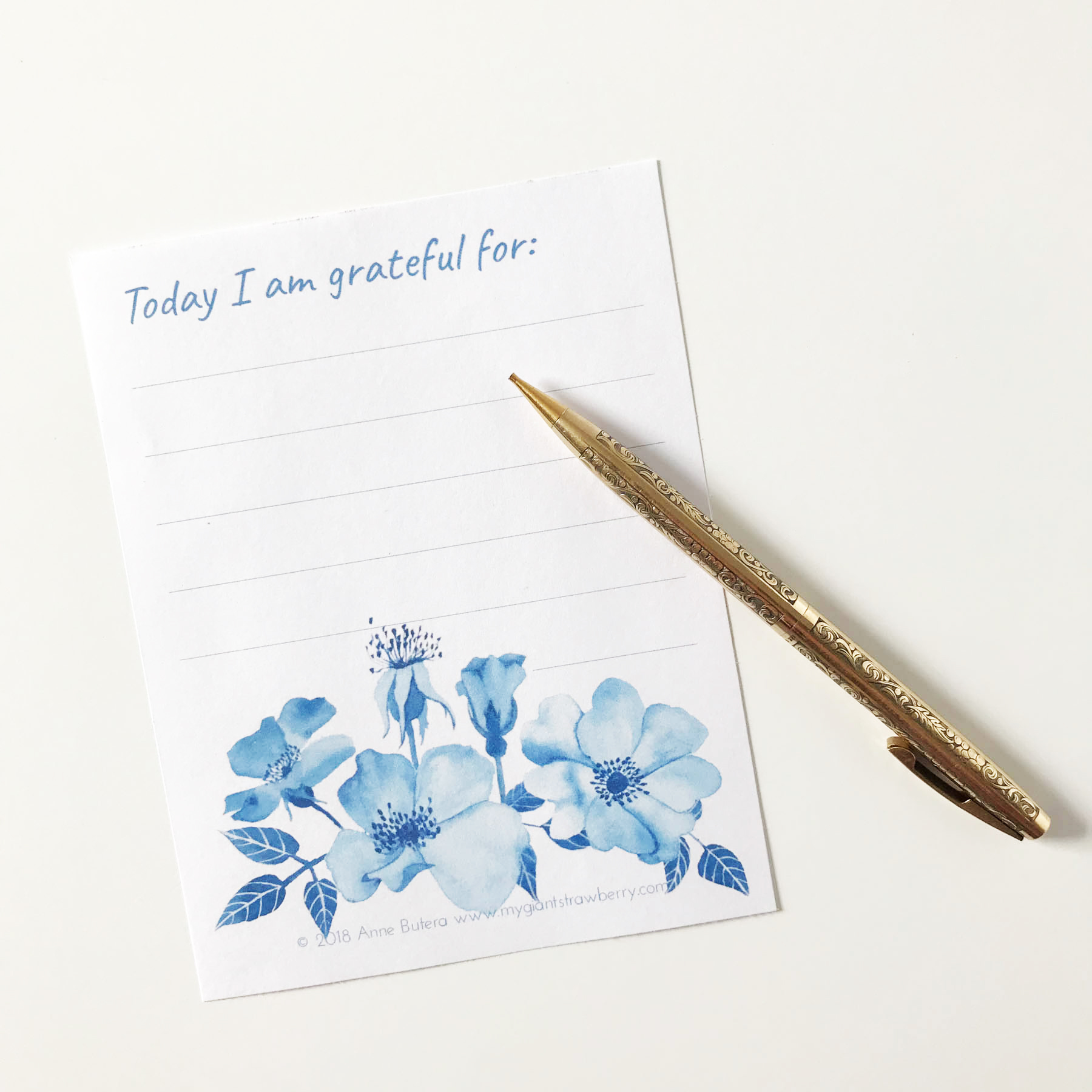 Gratitude List with Blue Roses by Anne Butera of My Giant Strawberry
