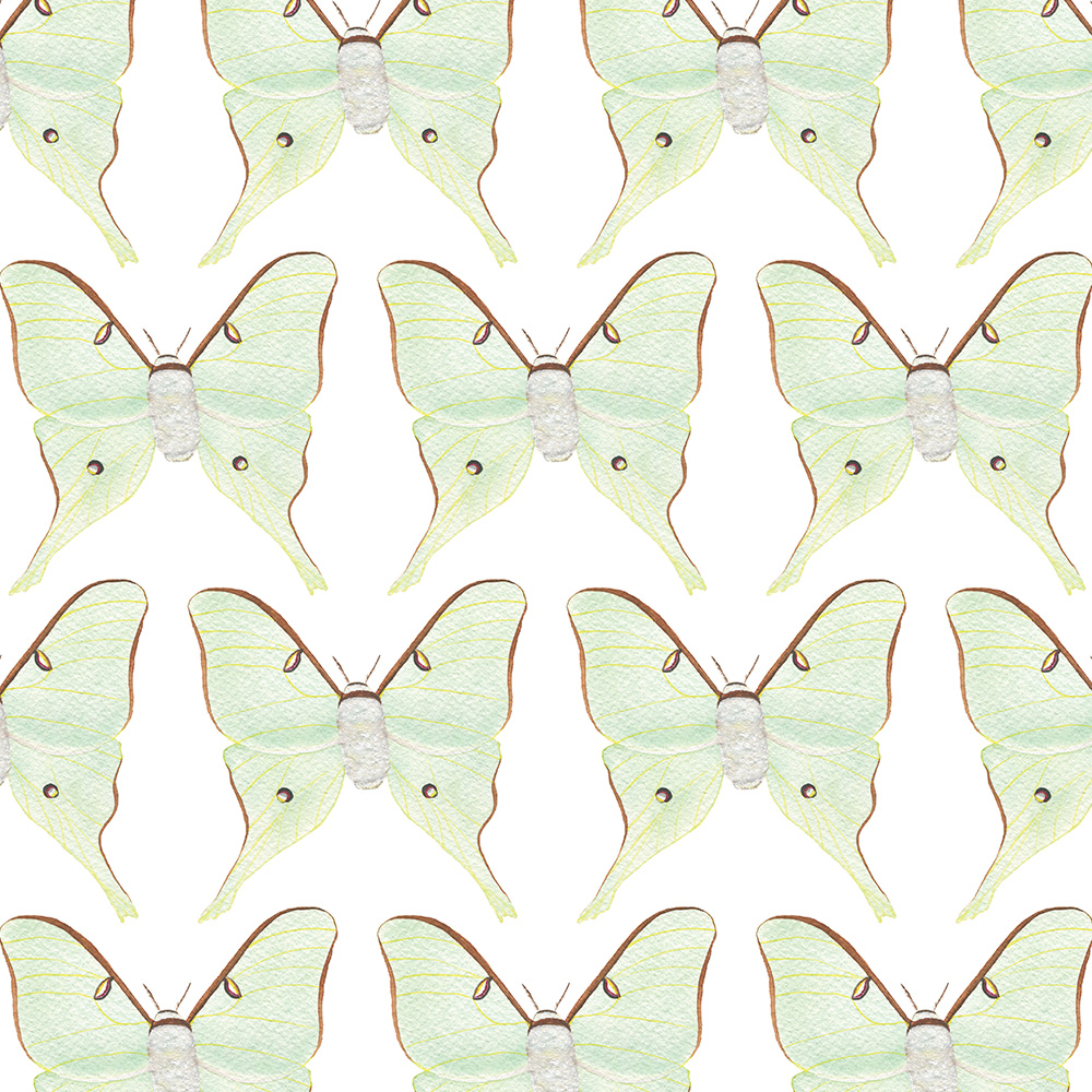 Watercolor Luna Moths Fabric by Anne Butera