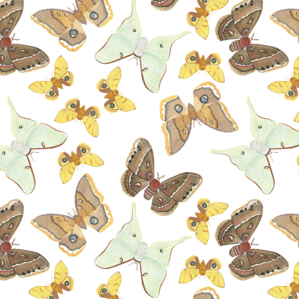 Watercolor Moths Fabric Design by Anne Butera
