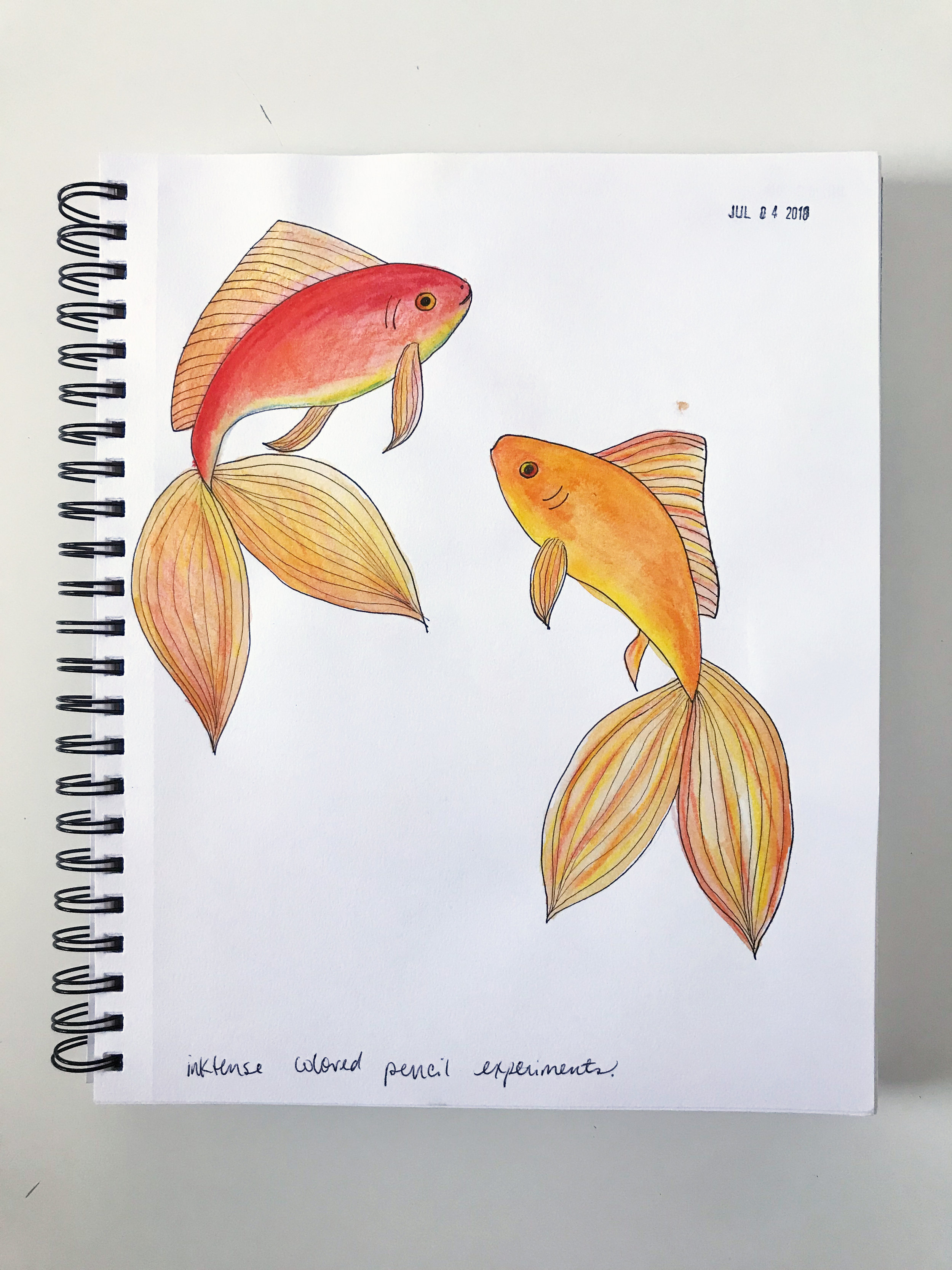 Experimenting with Inktense Colored Pencils and Drawing Goldfish in My Sketchbook by Anne Butera of My Giant Strawberry