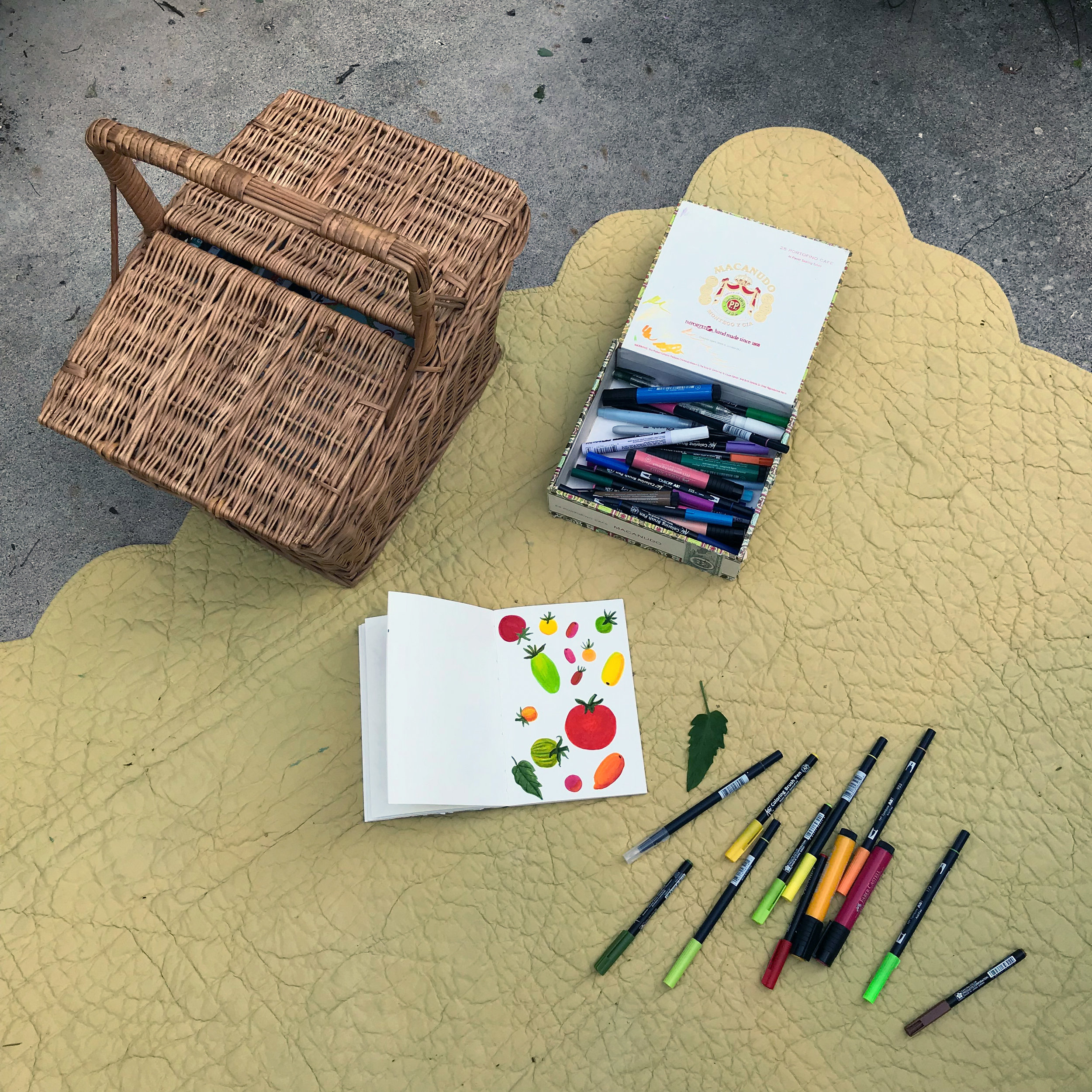 Outdoor Marker Sketches in the Sketchbook of Botanical Watercolor Artist Anne Butera