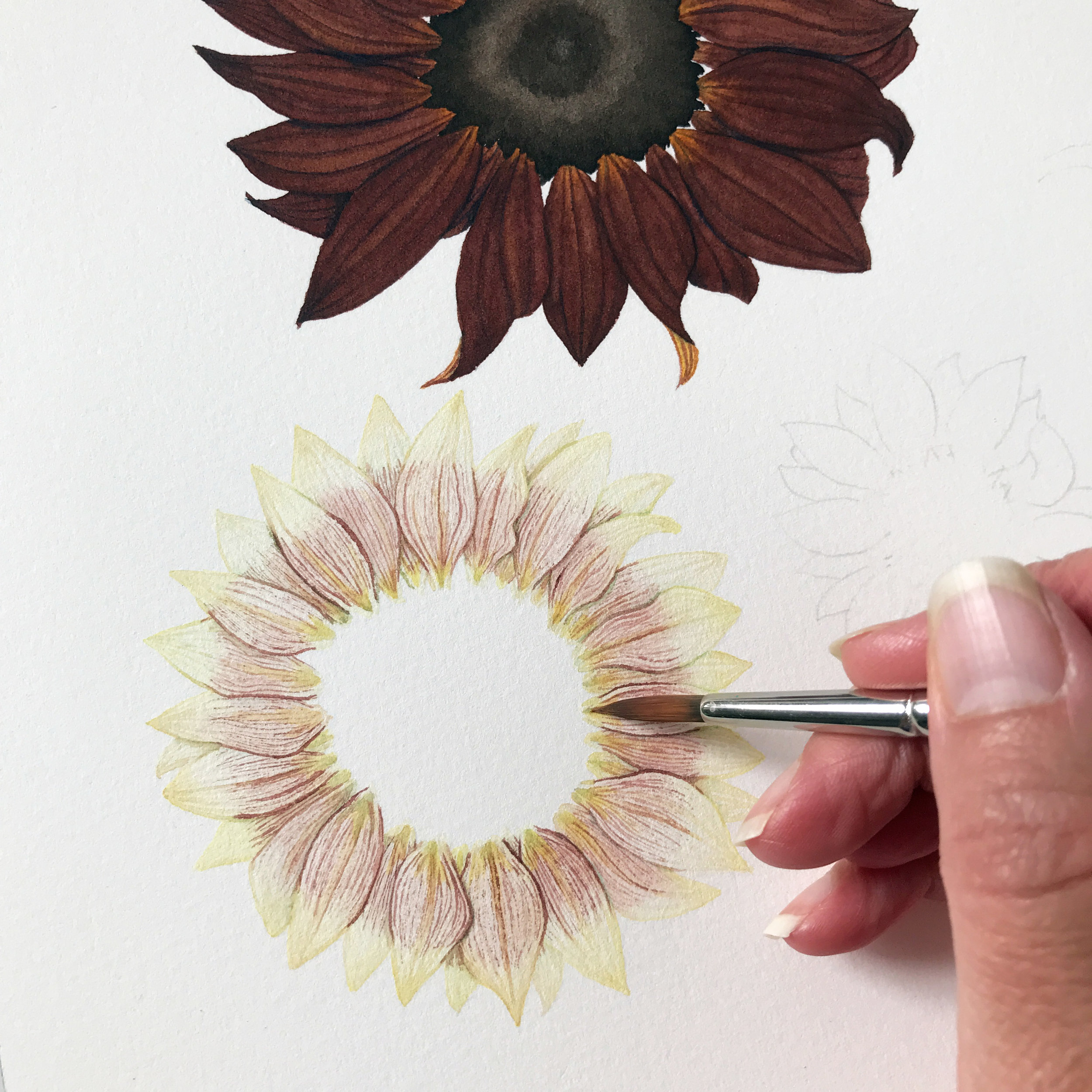 I Paint One Flower at a Time, One Petal at a Time, Finishing Each with Fine Details