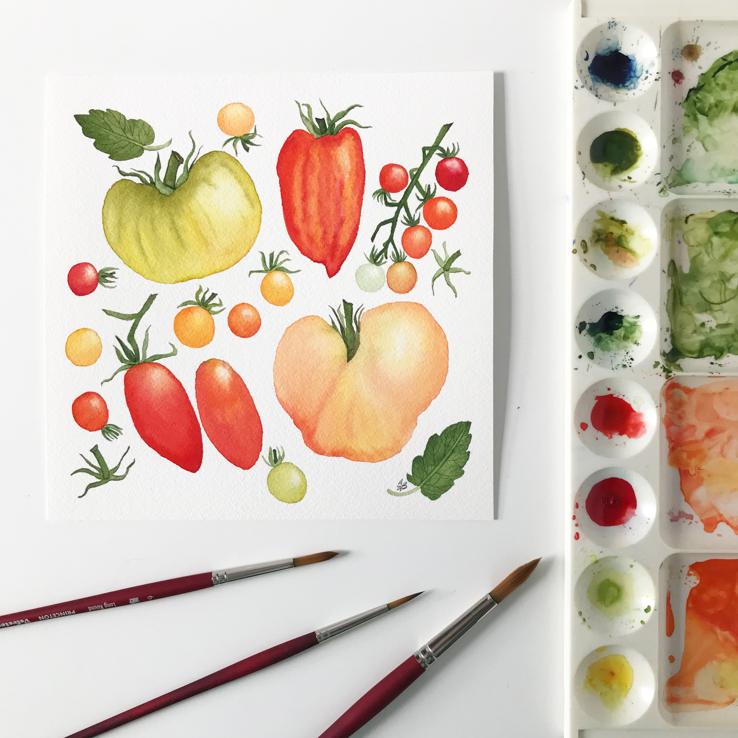 Heirloom Tomatoes Watercolor Painting by Anne Butera