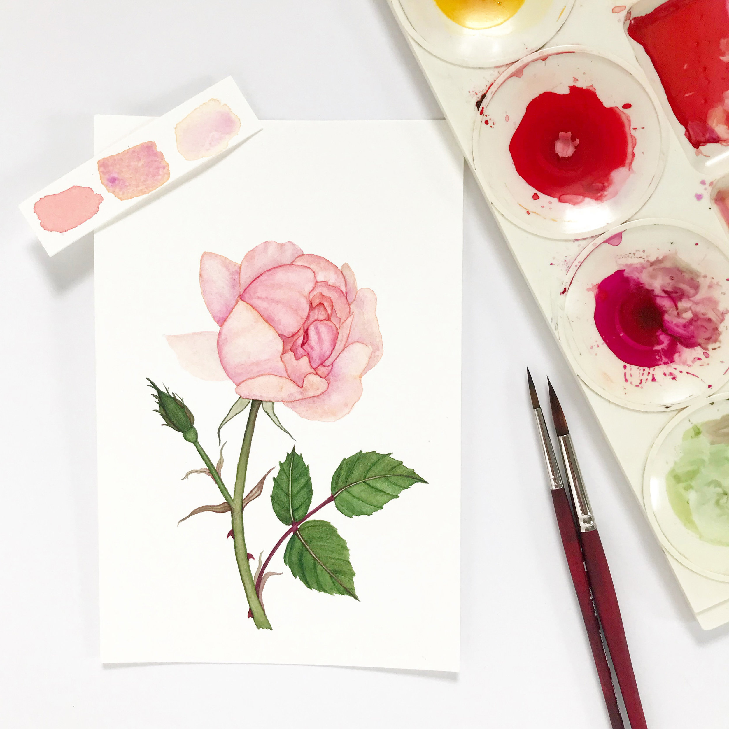 Sometimes I have to paint something just to paint it and the watercolor brings me joy