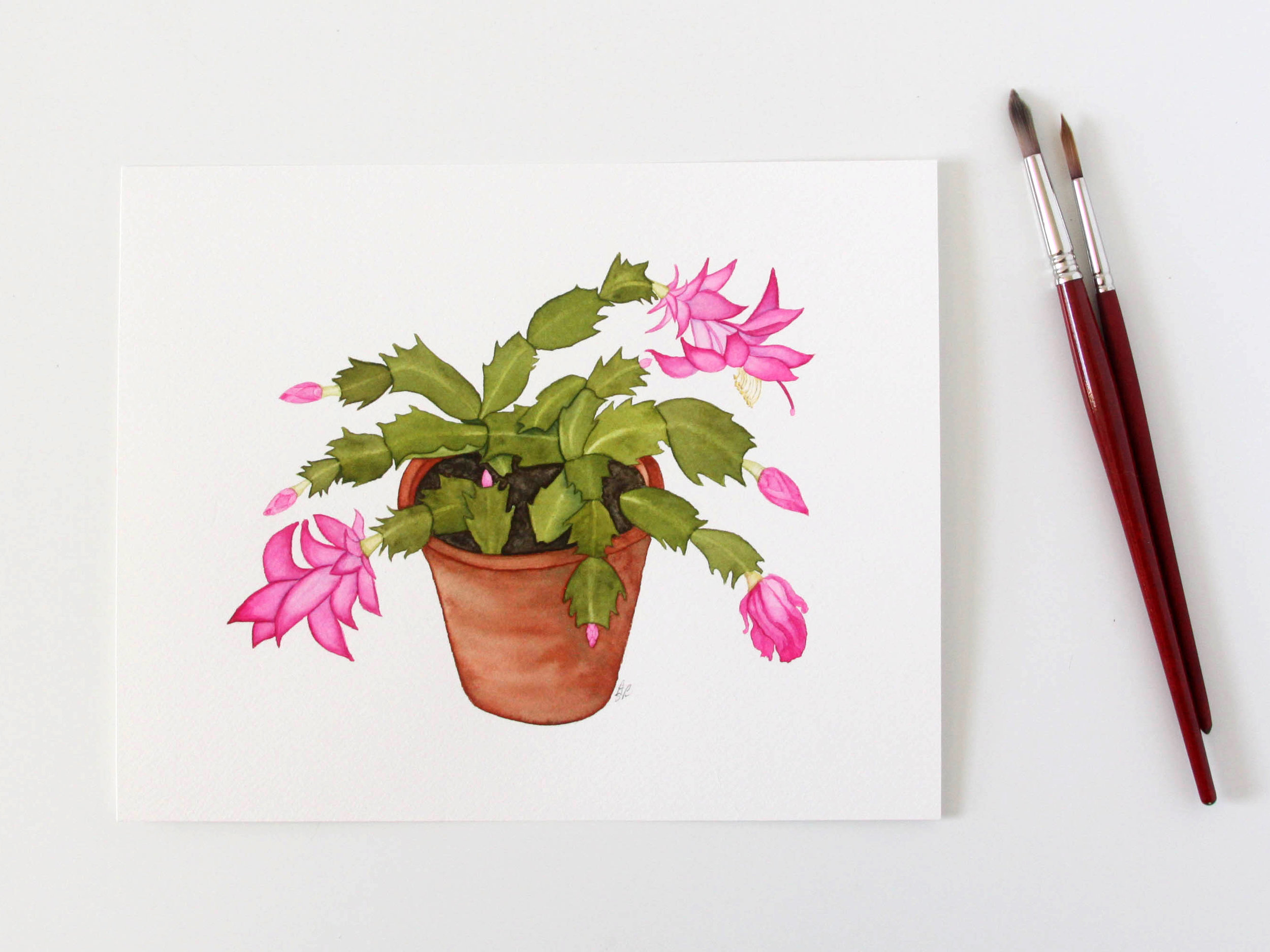 Watercolor Christmas Cactus in a Clay Pot Painting by Anne Butera