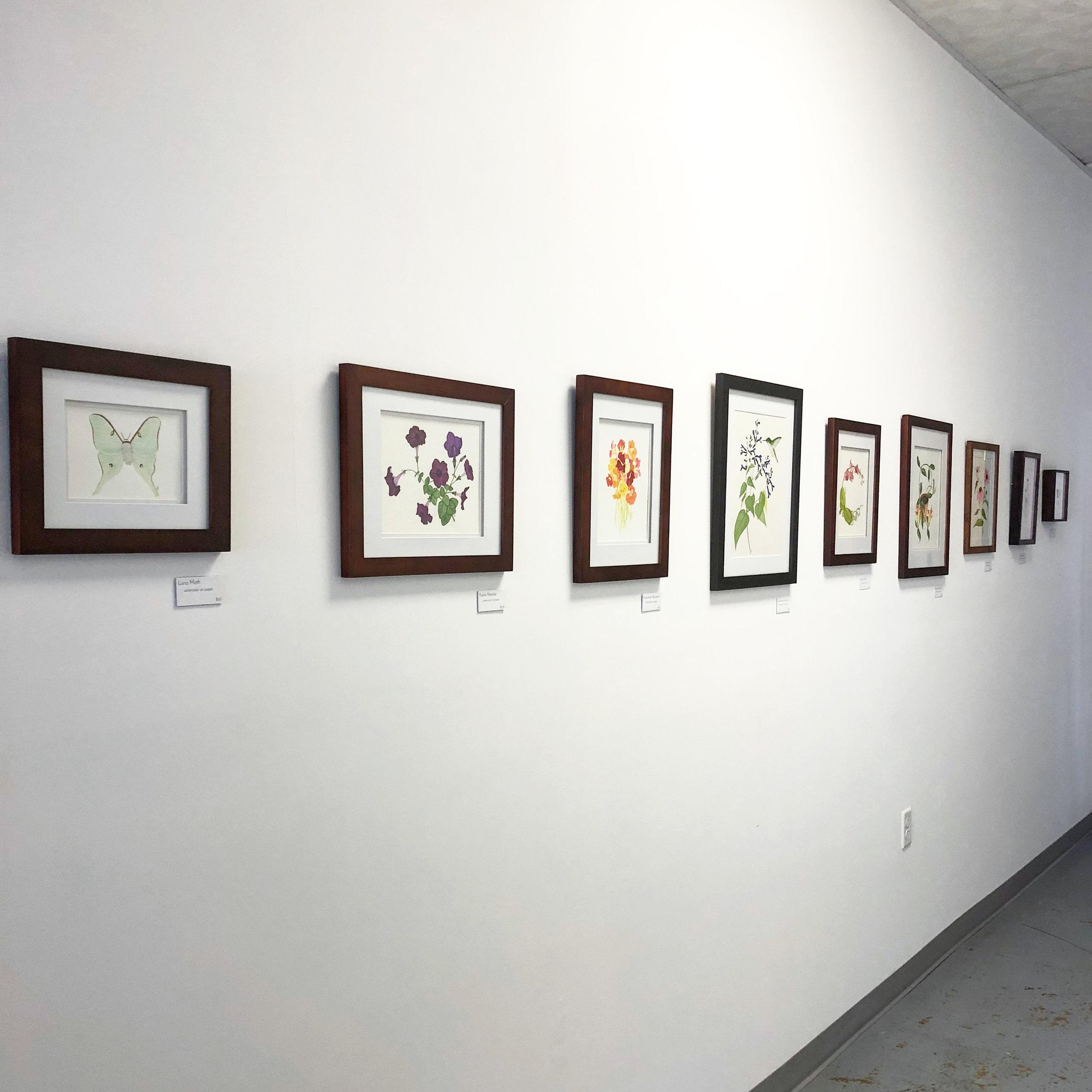 Anne Butera's Art on Exhibit at Mac Help in Viroqua, Wisconsin