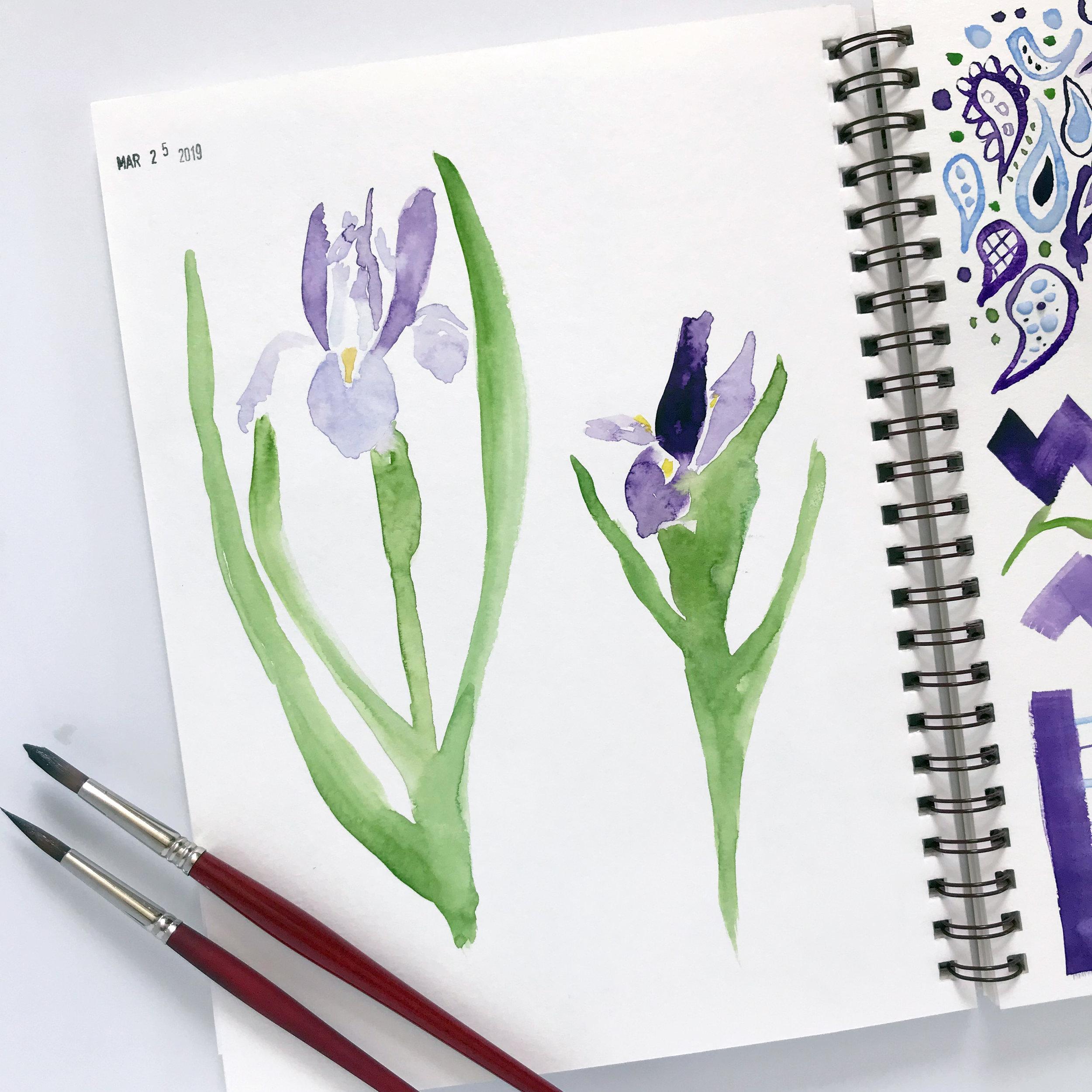 Loose, Messy Iris Flowers Painted with Kuretake Watercolors in My Sketchbook