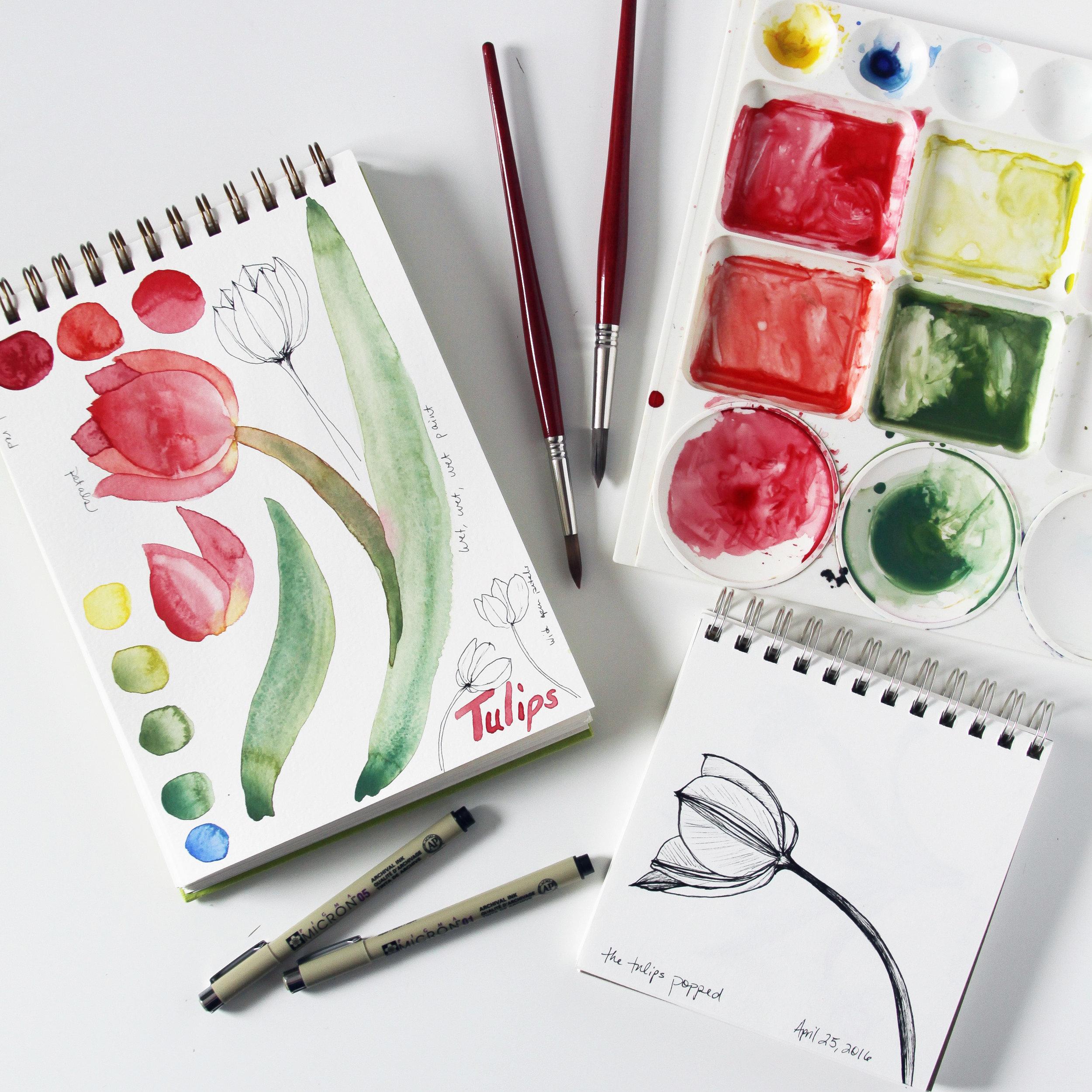 Watercolor Tulips in Anne Butera's Sketchbooks