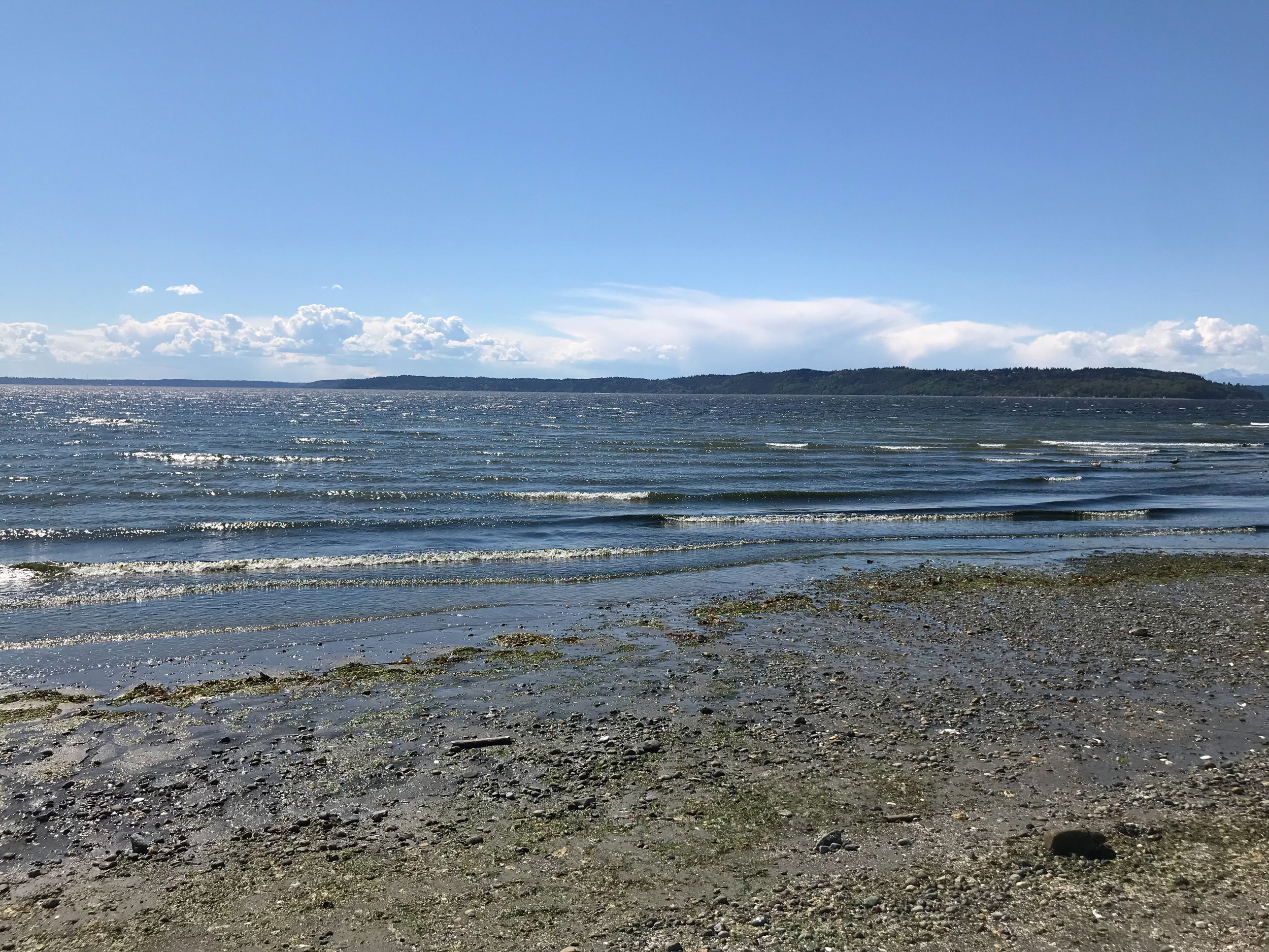 Puget Sound seen from Saltwater State Park