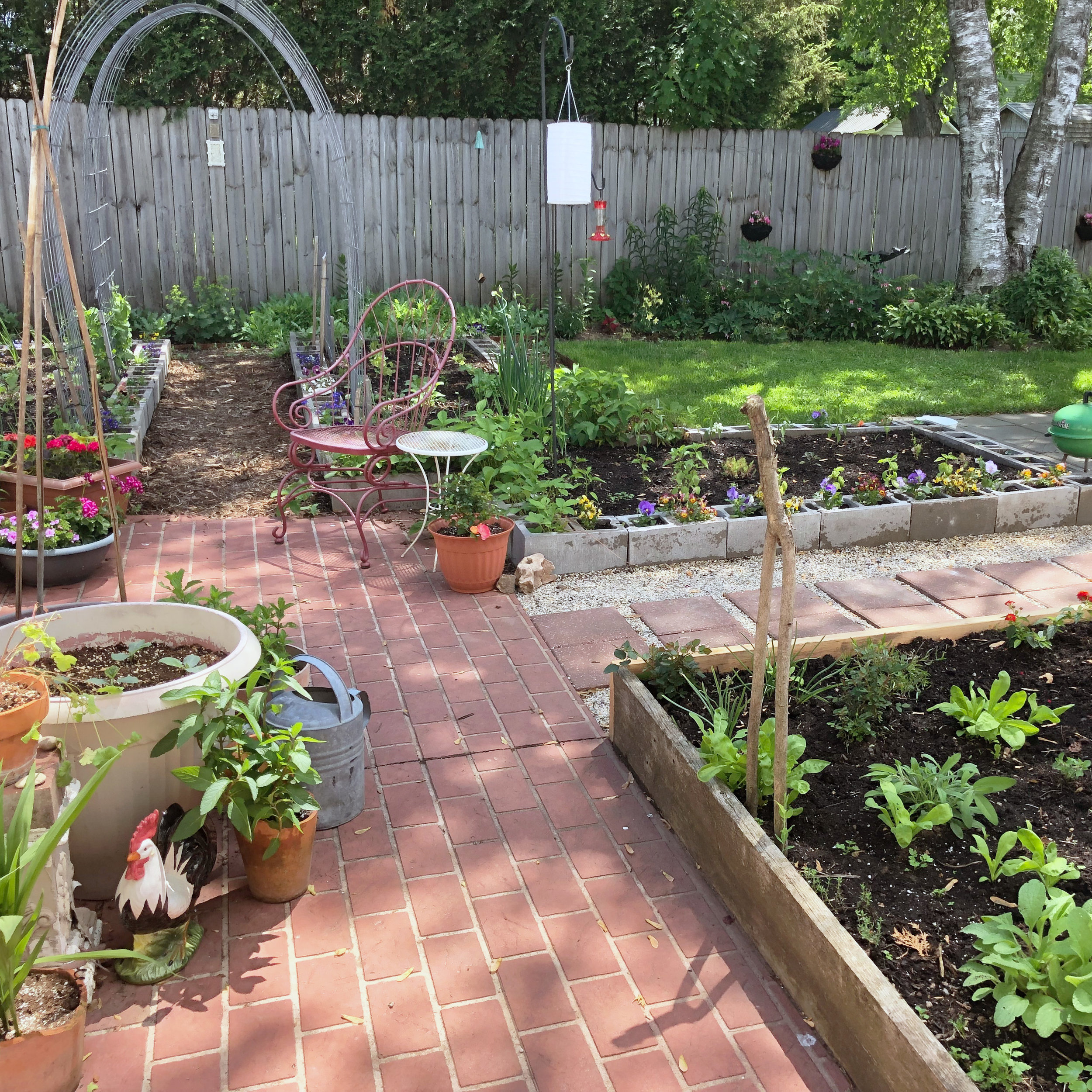 We've Been Working On Lots of Projects Including Extending the Raised Beds and the Path From Patio to Patio