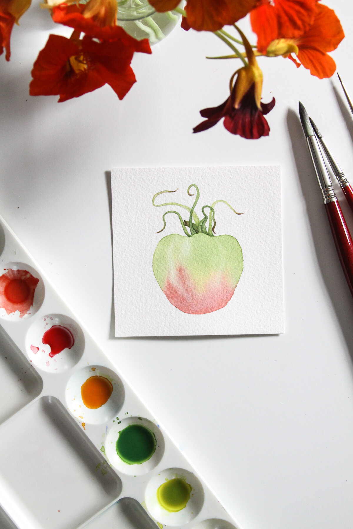 A Watercolor Painting of a Green and Red Tomato by Anne Butera