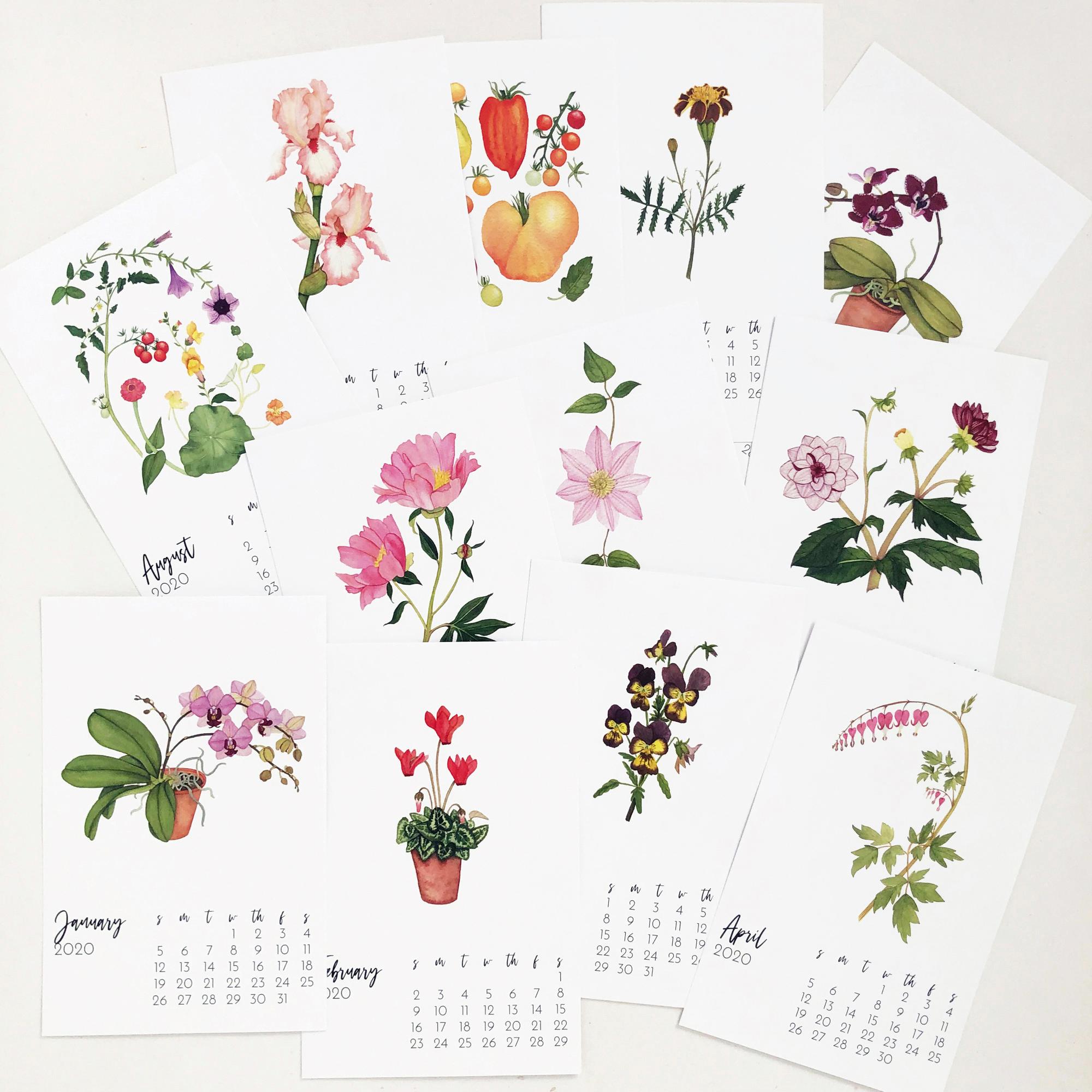 2020 Botanical Watercolor Desk Calendars by Anne Butera