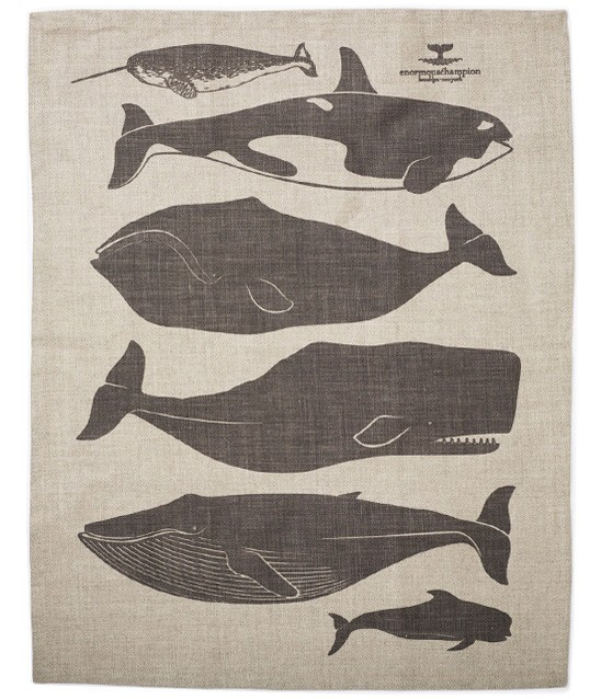 Whales Tea Towel By Enormous Champion. Check them out  HERE