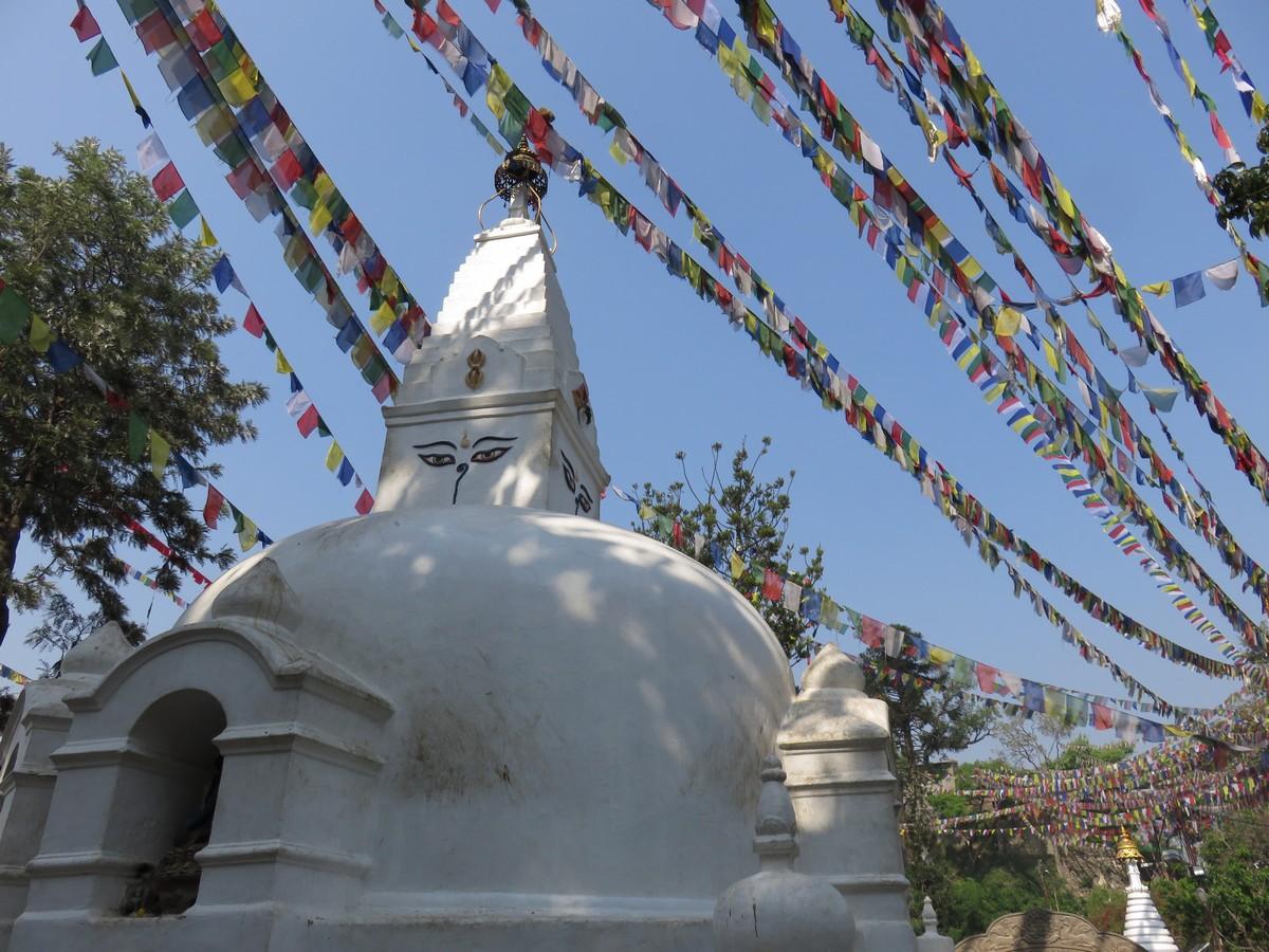 Swayambhunth Temple (monkey temple, due to the hordes of monkeys hanging around)