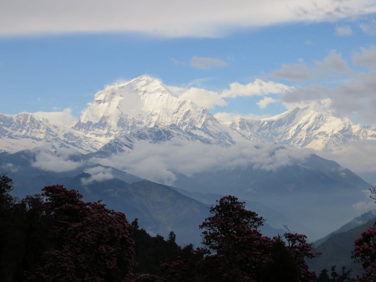 Dhauligiri - 7th tallest mountain in the world.