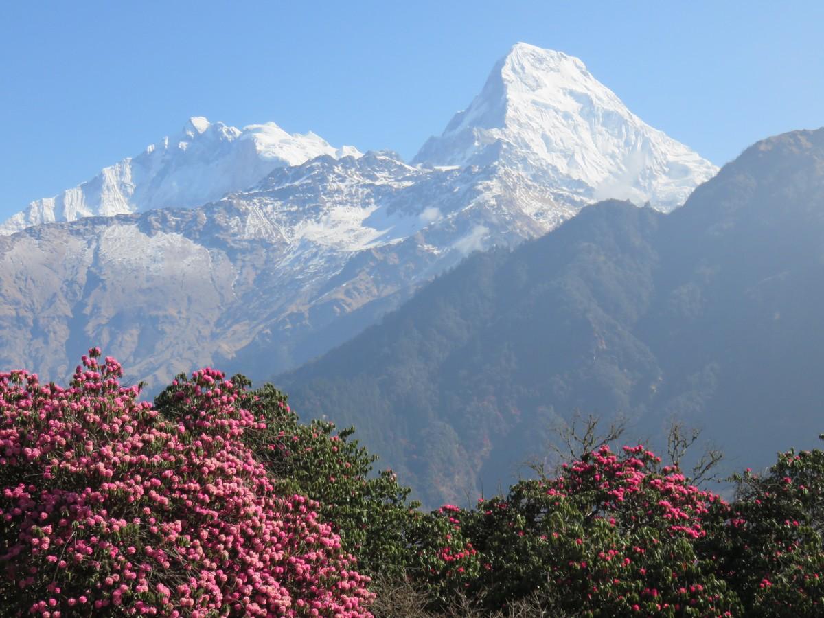 Annapurna South, which isn't even the main Annapurna peak.