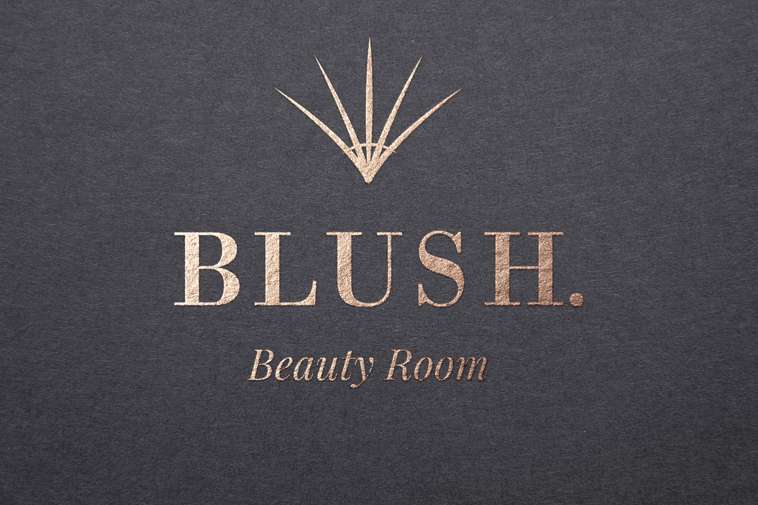 Rebrand of the Blush logo included creation of a custom symbol and a typography update.