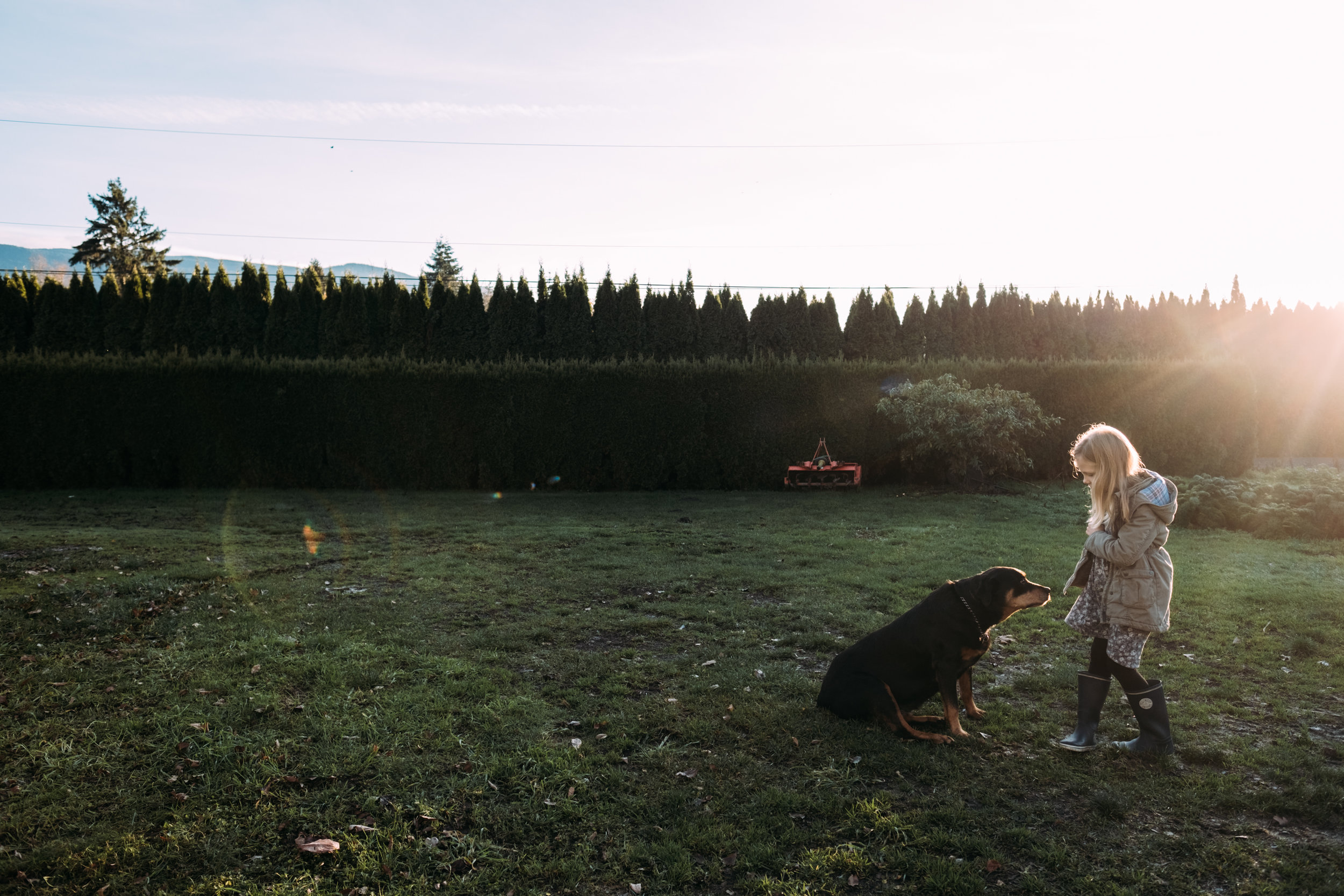 girl with dog on grass at sunset in chilliwack fraser valley canada photographer