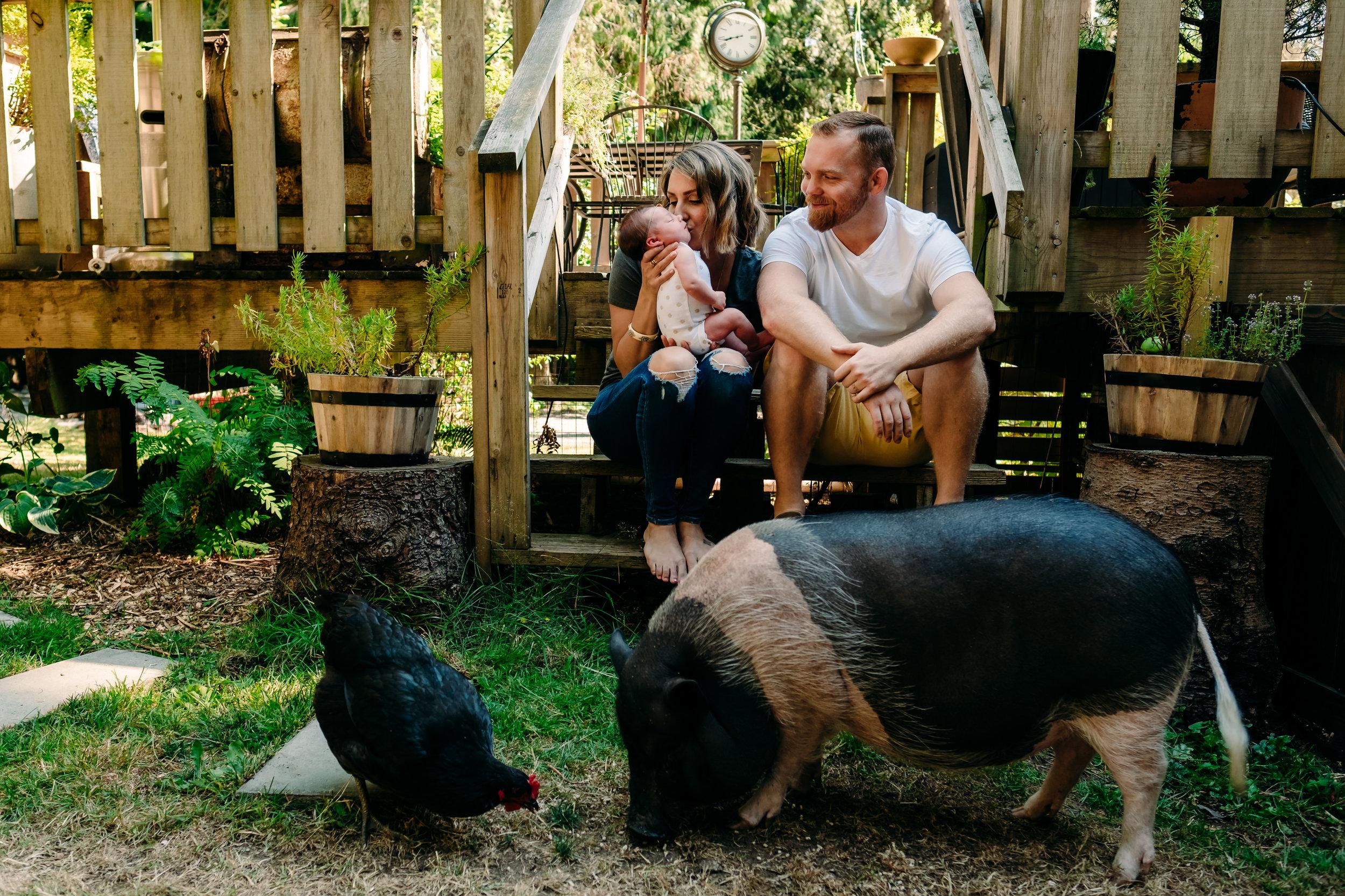 family-newborn-adoption-pig-chicken-porch.jpg