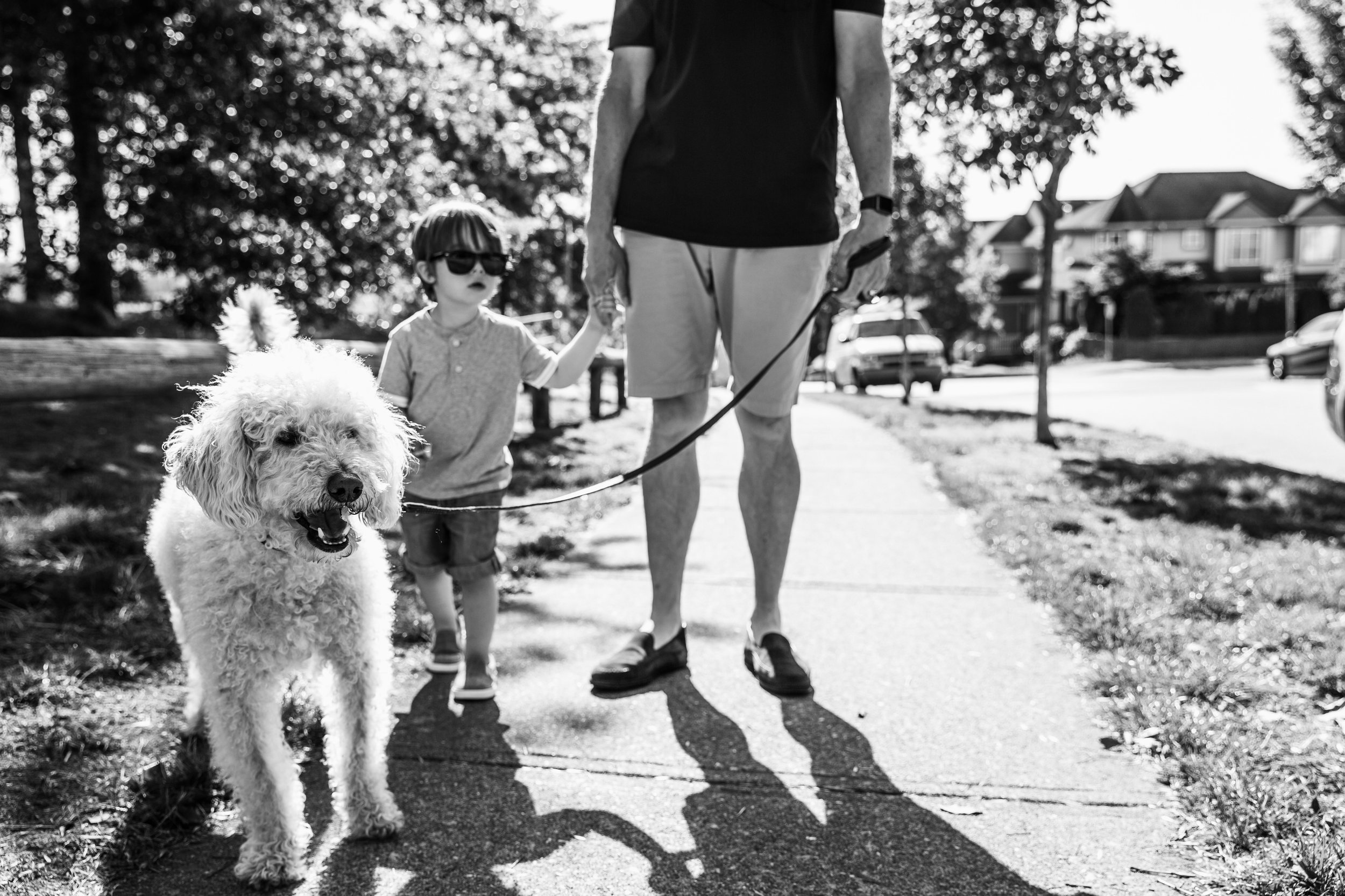 dad, dog and son going for a walk, dog in front