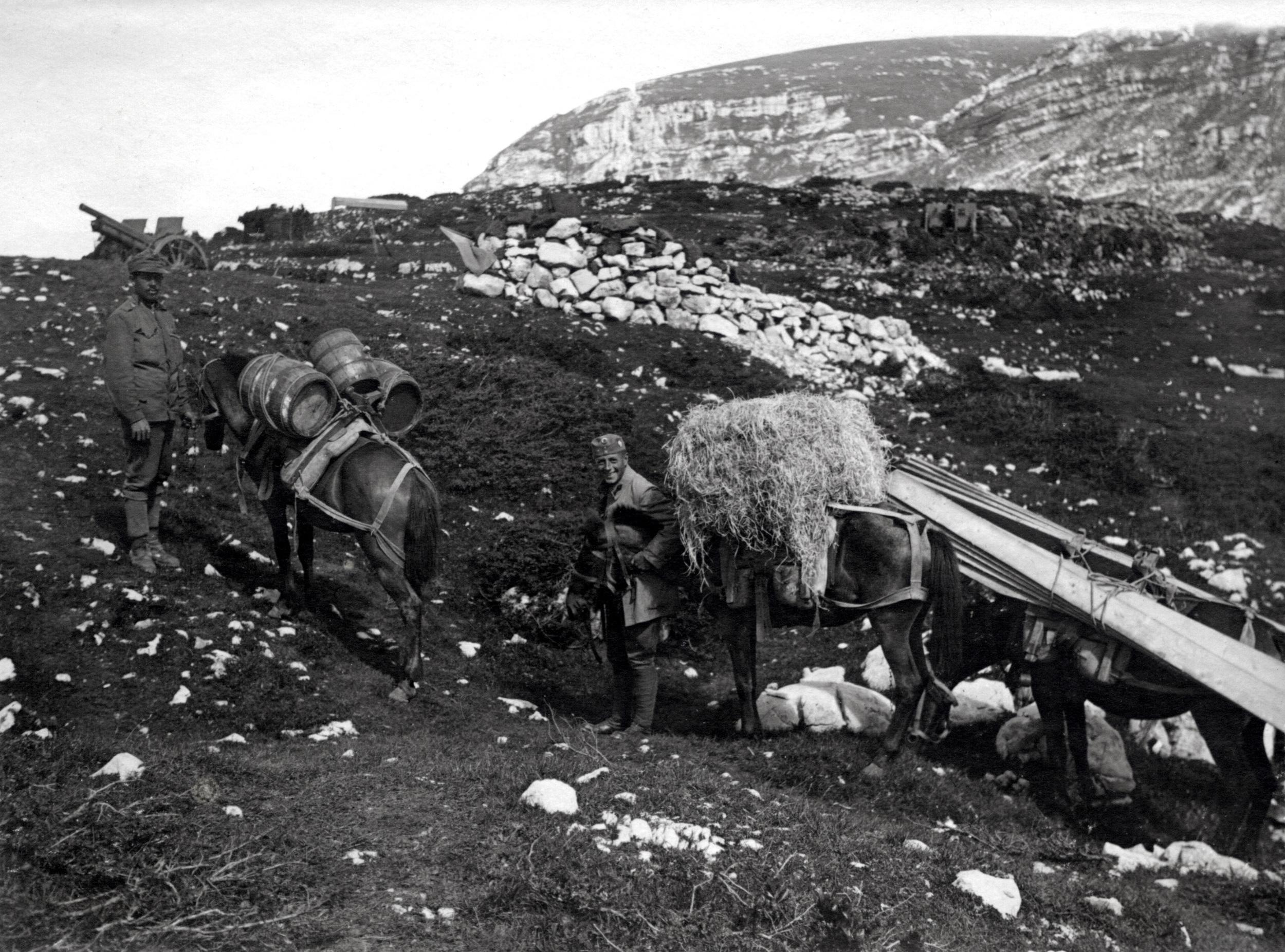 Salmerie austroungariche trasportano acqua, fieno e travi di legno verso le postazioni di artiglieria in alta quota