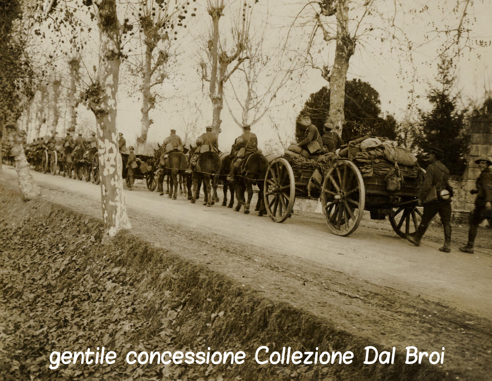 06 - artiglieria in transito in zona Piave (ASDM - coll dal broi) (c).jpg
