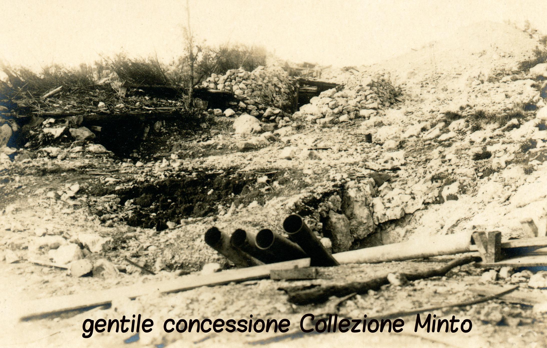06 - ASDM - coll minto (c).jpg