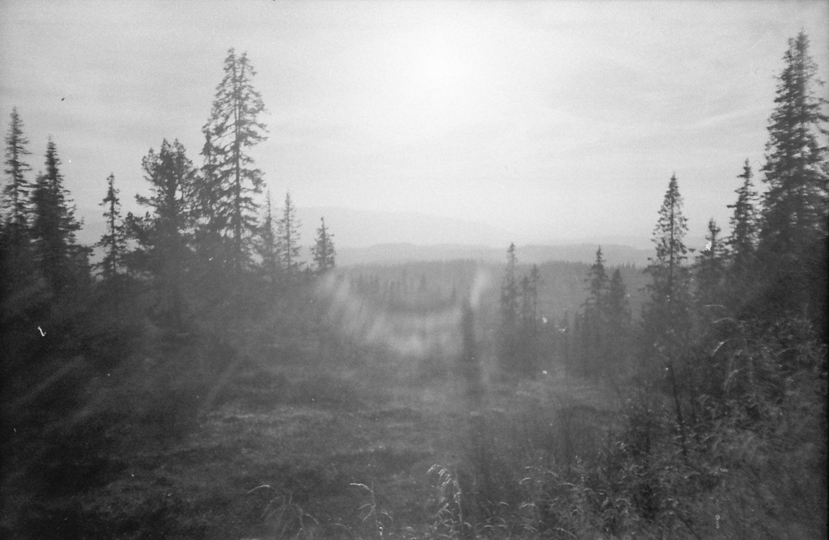 norfilm-25.jpg