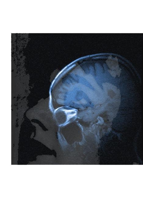 faceskull-print copy.jpg