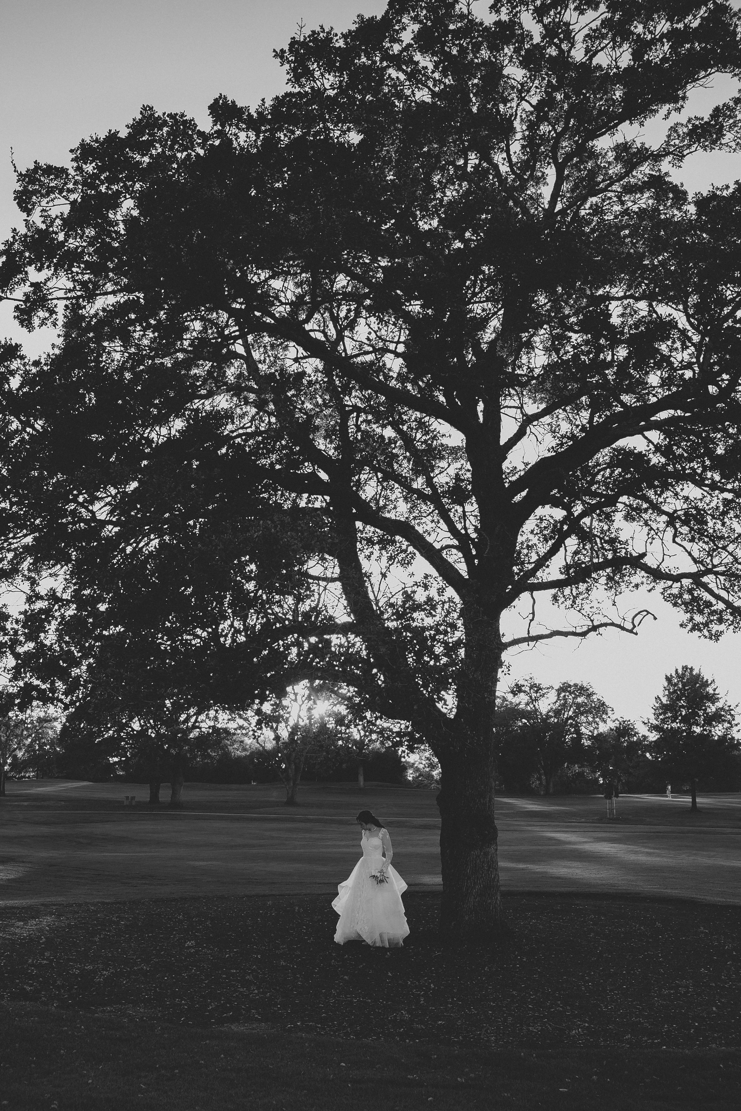 Rocklin Wedding-4.jpg
