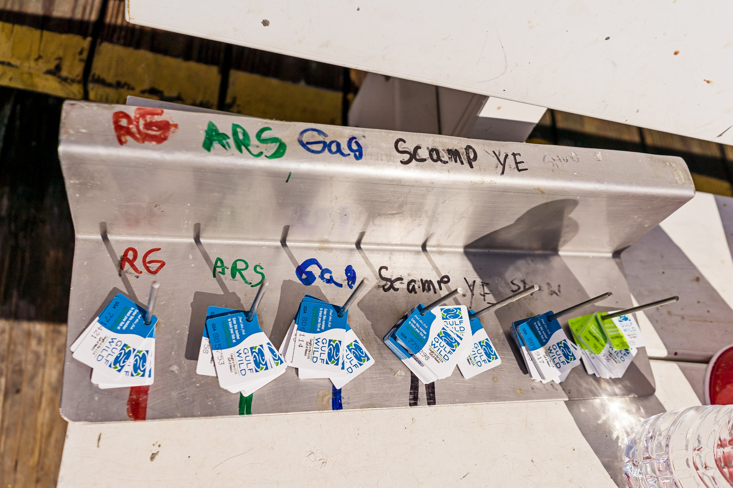 Each fish is tagged with a GulfWild tag.