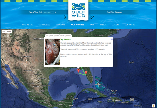 """TransparenSea is the web portion of the tagging program. Find the """"Track Your Fish"""" feature on the Gulf Wild website. Then either scan the QR number or type it in to the block. There you can click through the tabs to see more information on the fish type, name and background of the captain, fish house and city where the seafood landed, and the 10 square mile area in the Gulf of Mexico where the fisherman caught your seafood."""