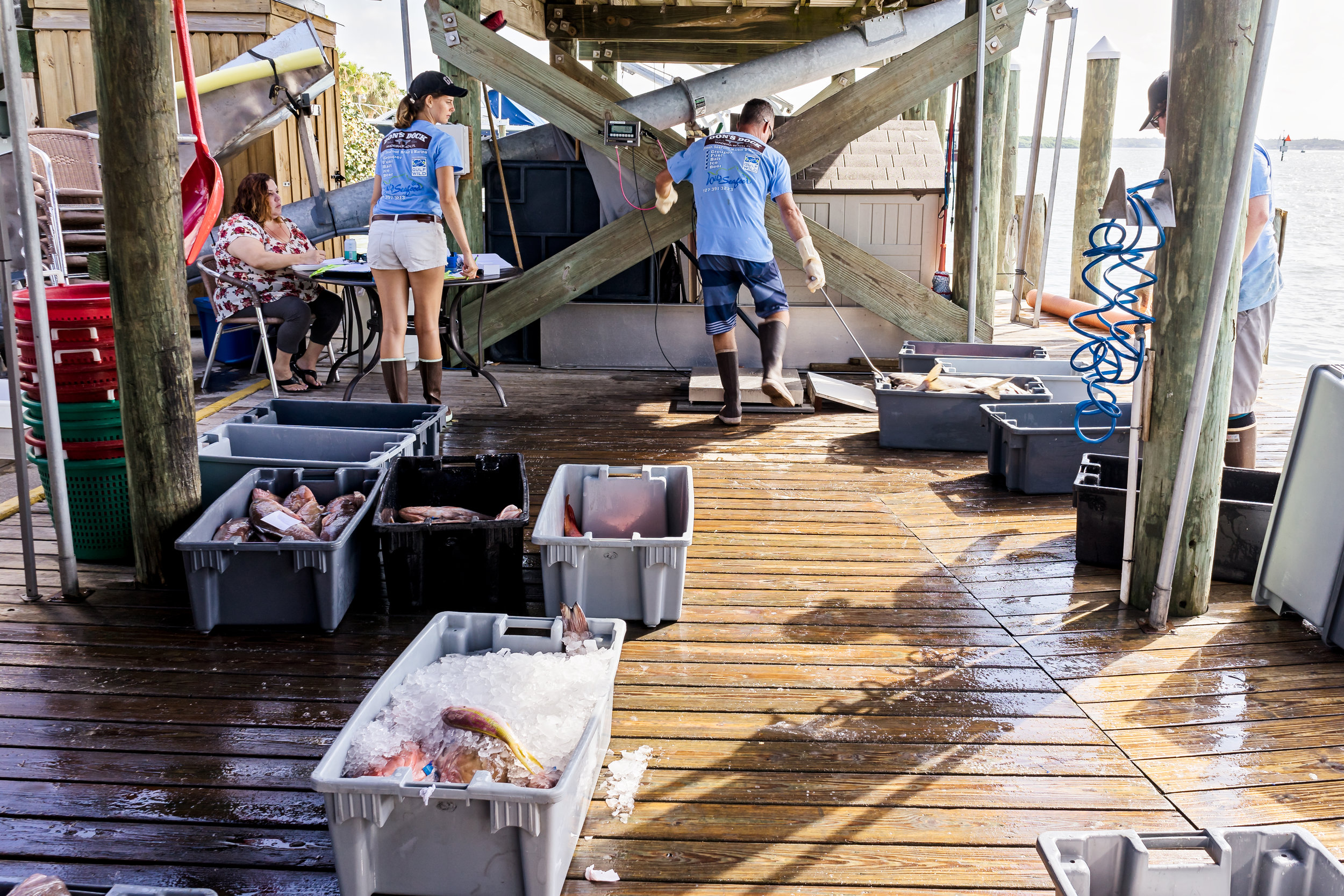 The Wild Seafood crew wrapping up operations for the day.
