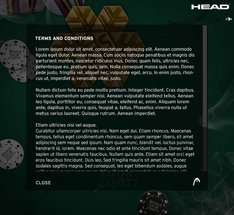 HEAD_FacebookPoker_RZ_12112013_0007_03_Poker App TERMS & CONDITIONS.jpg