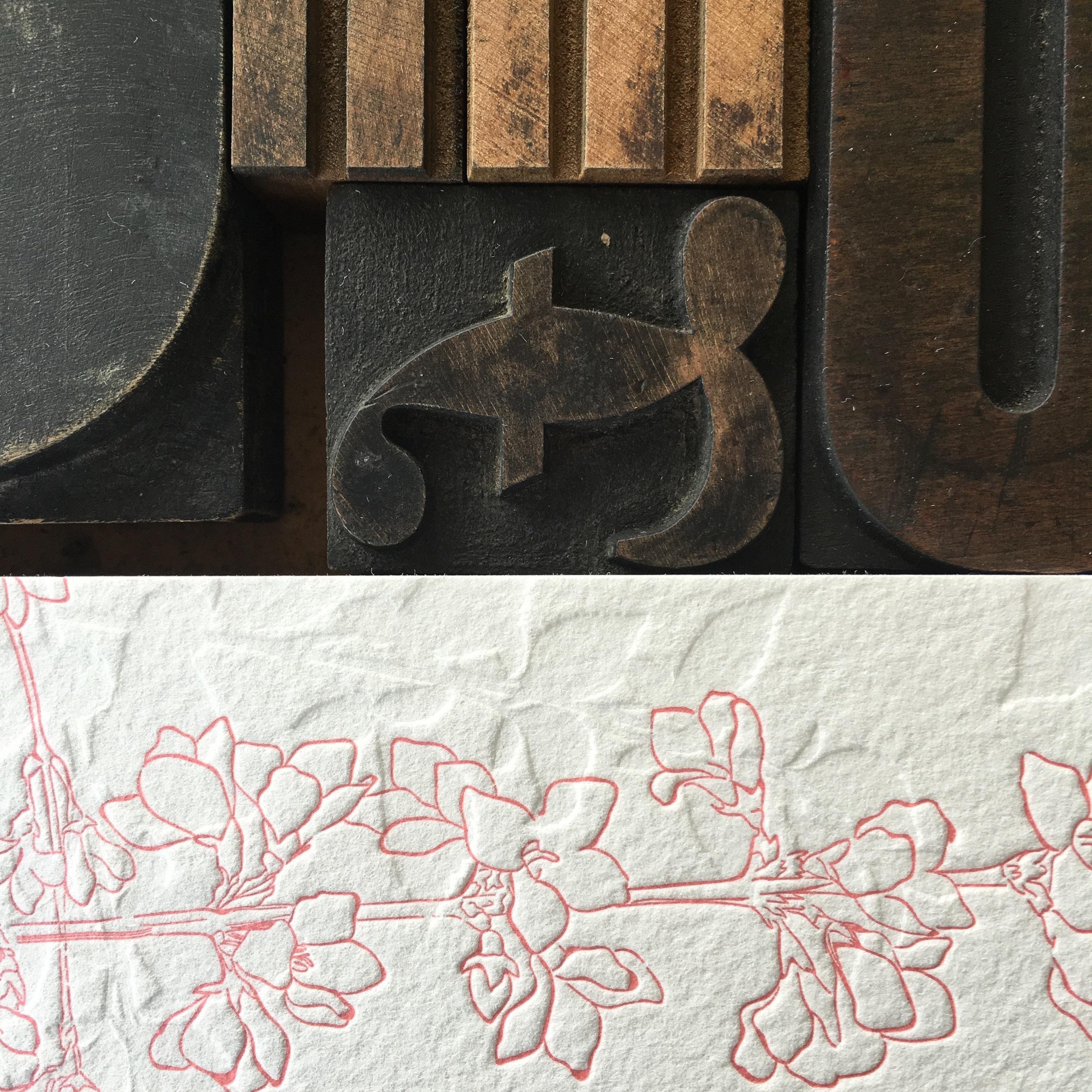 Rosetta & Carl Detail
