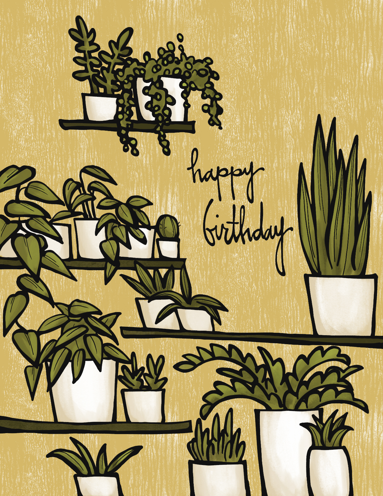 House Plant Birthday.jpg