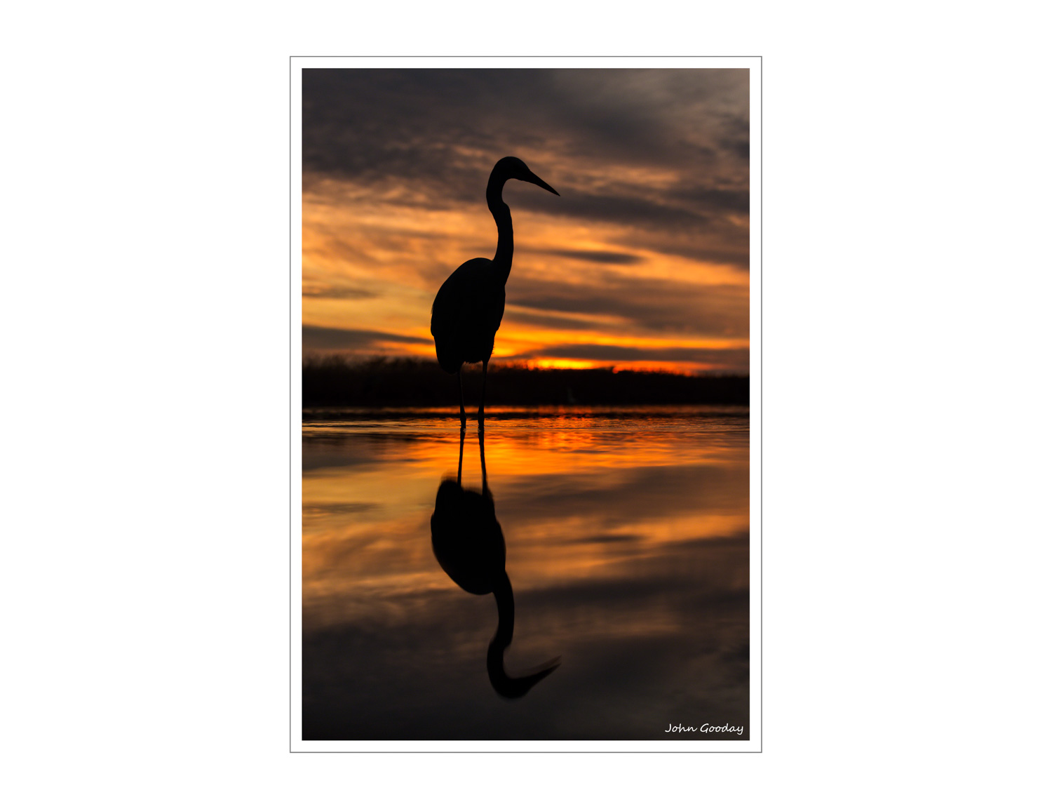 (Image: Great Egret at sunset. Canon EOS 5D Mark III, EF70-200mm f/2.8L IS II, 1/400 sec @ f/4.5, ISO 800, tripod, hide)