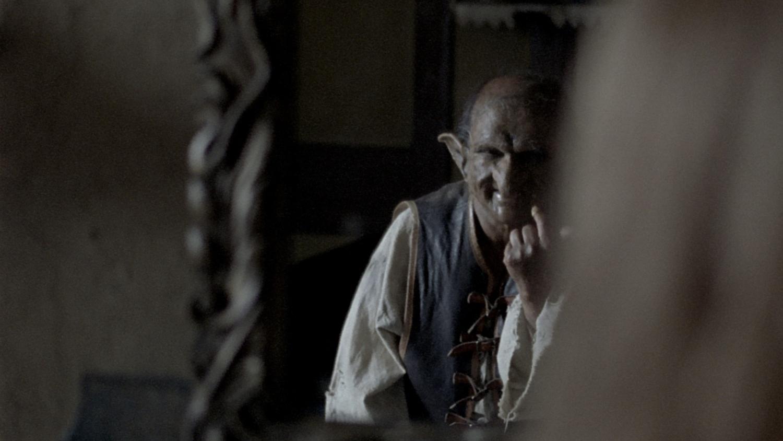 goblin in mirror.jpg