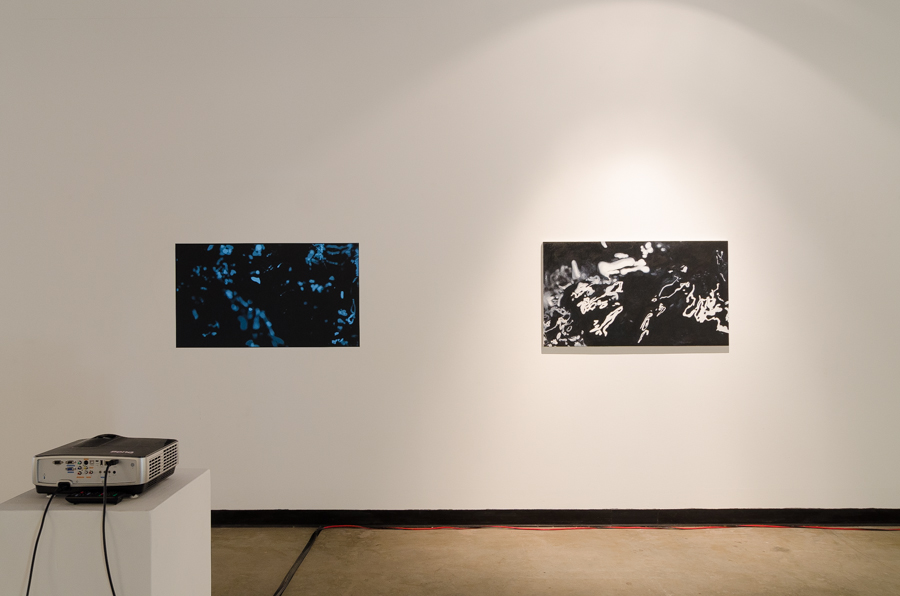 Visible Light   2014  Video    and   Cognition (Video Still)   2014  Oil on Canvas